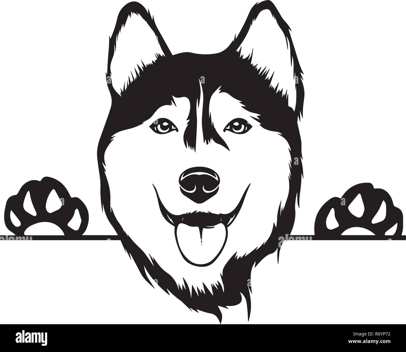 Siberian Husky Pedigree Dog Breed Head Isolated Pet Portrait Smiling Happy Puppy Face Animal Cartoon Illustration Portrait Art Artwork Cute Design Stock Vector Image Art Alamy
