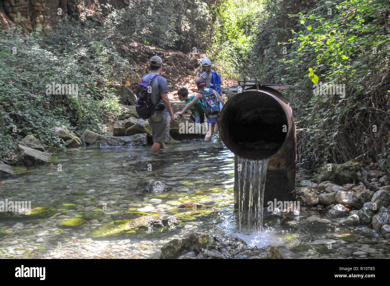 Treated water is being returned to nature at the Kziv stream nature reserve, Galilee, Israel - Stock Image