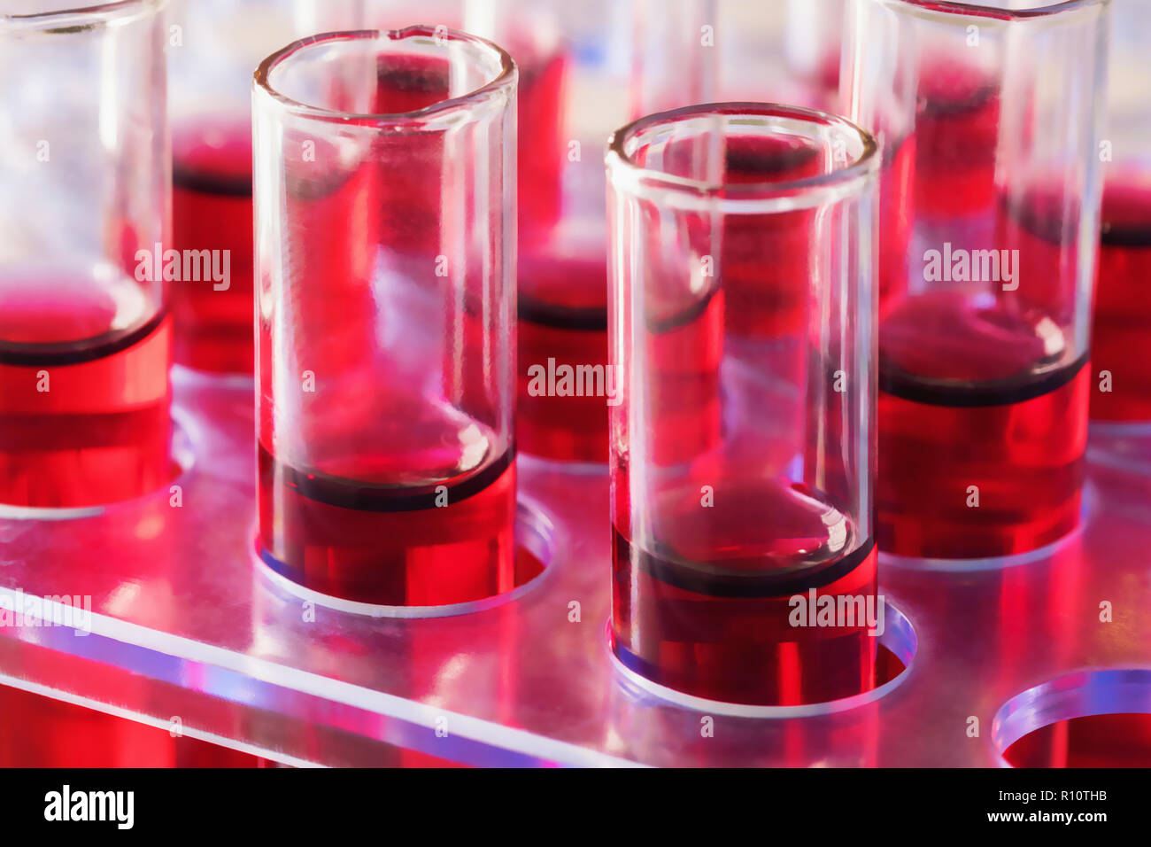 Test tubes Close up arranged in medical laboratory. Medical healthcare analysis Immunity viruses Concept. - Stock Image