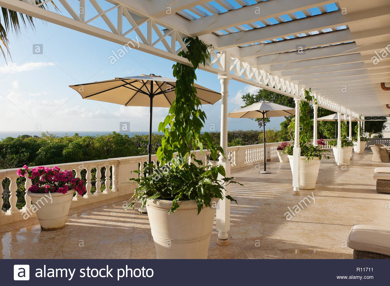 Umbrellas and potted plants on balcony - Stock Image