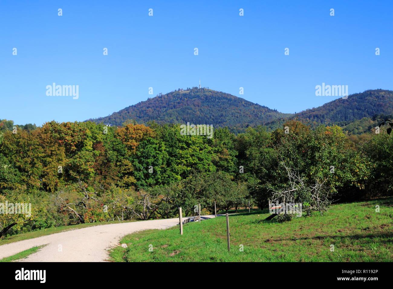Blick über das öffentliche Obstgut, auf den Berg Merkur in Baden-Baden - Stock Image
