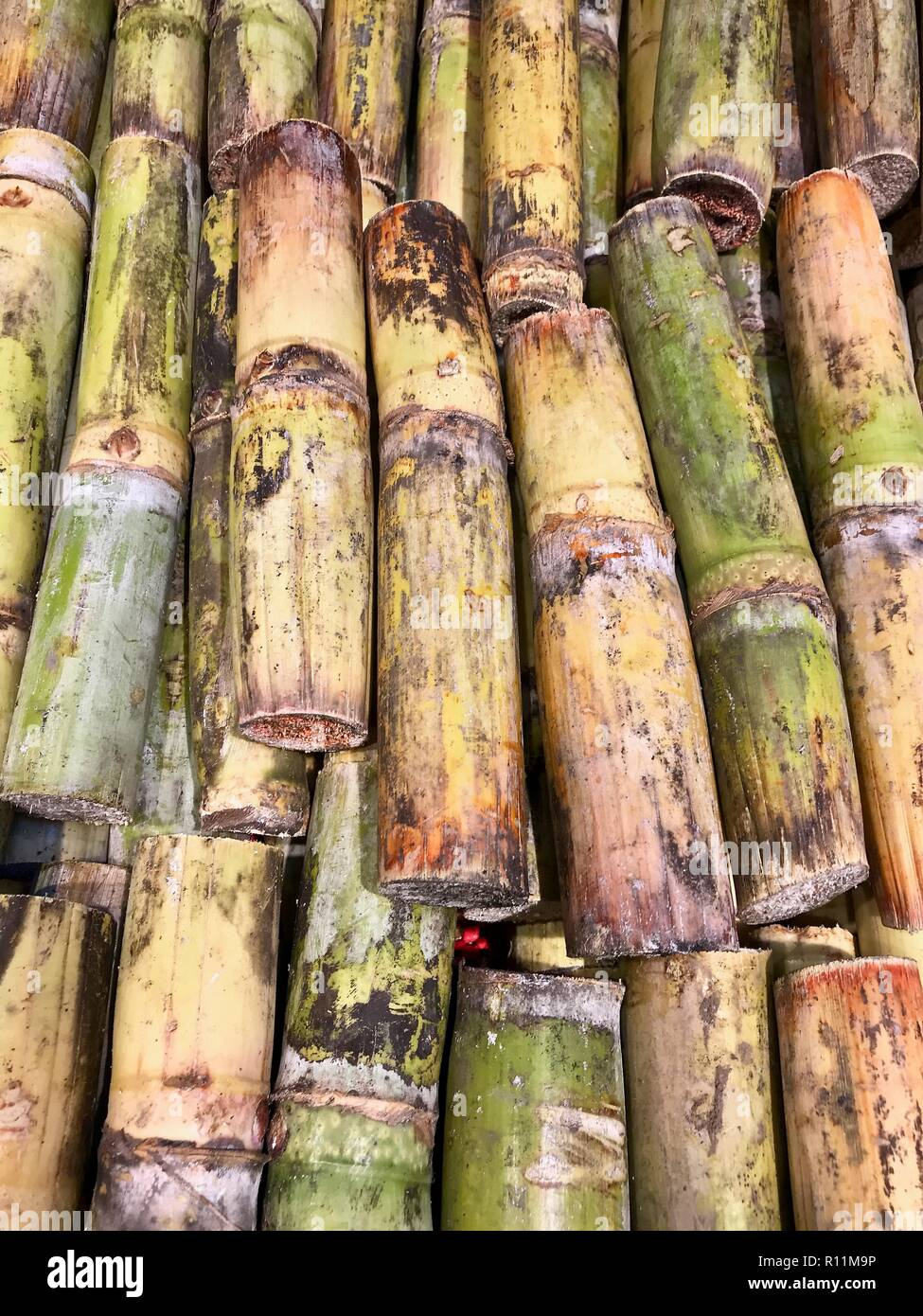 Fresh cut sugar cane in the Caribbean piled up for market - Stock Image