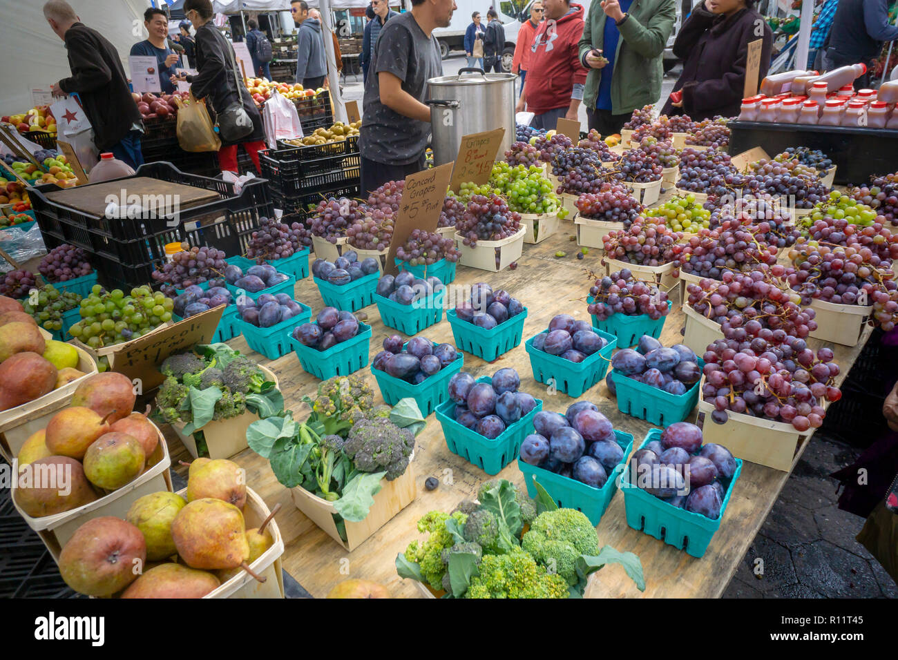 Grapes and other produce at the Union Square Greenmarket in New York on Wednesday, November 7, 2018.   (© Richard B. Levine) Stock Photo