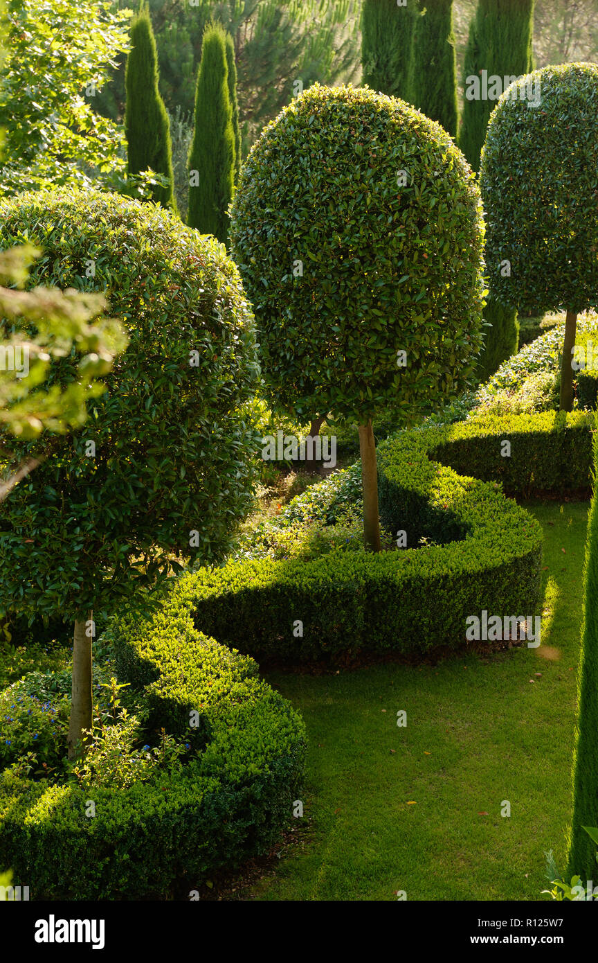 Hedge and trees in garden Stock Photo