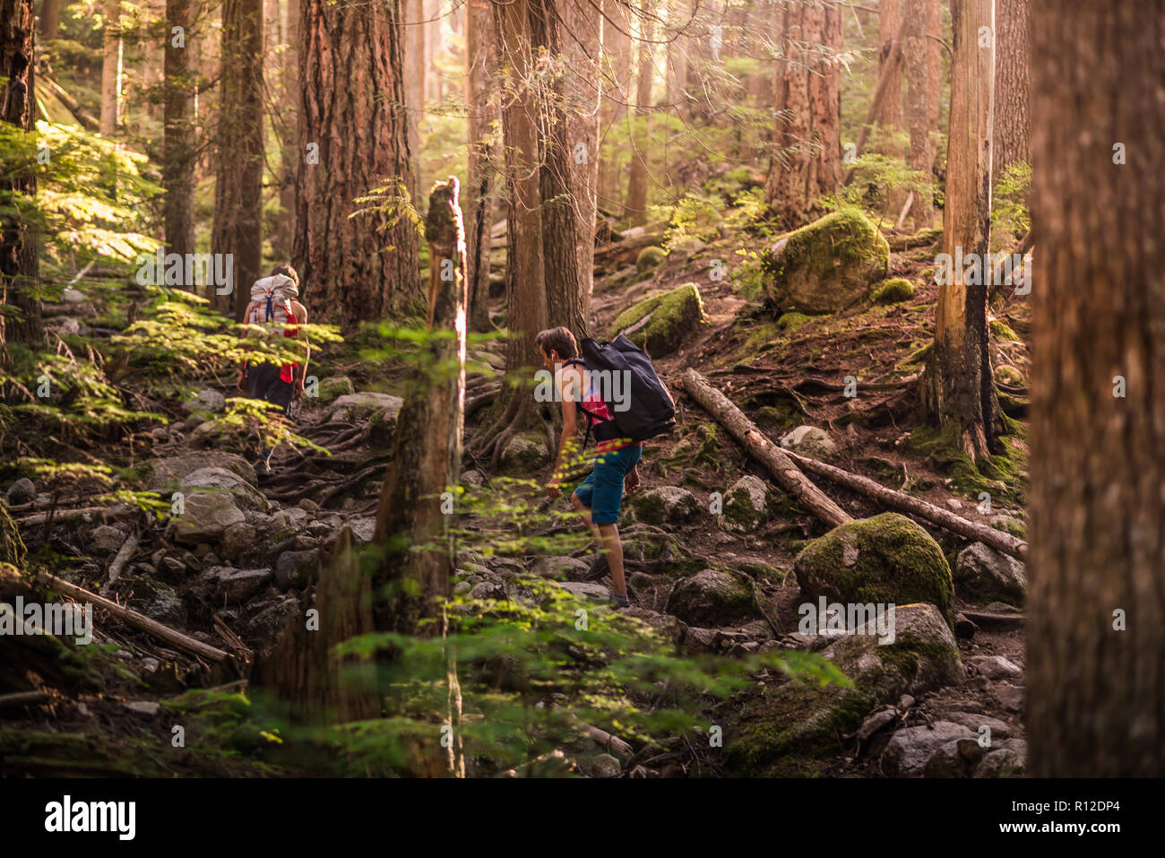 Rock climbers walking through forest, Squamish, Canada - Stock Image