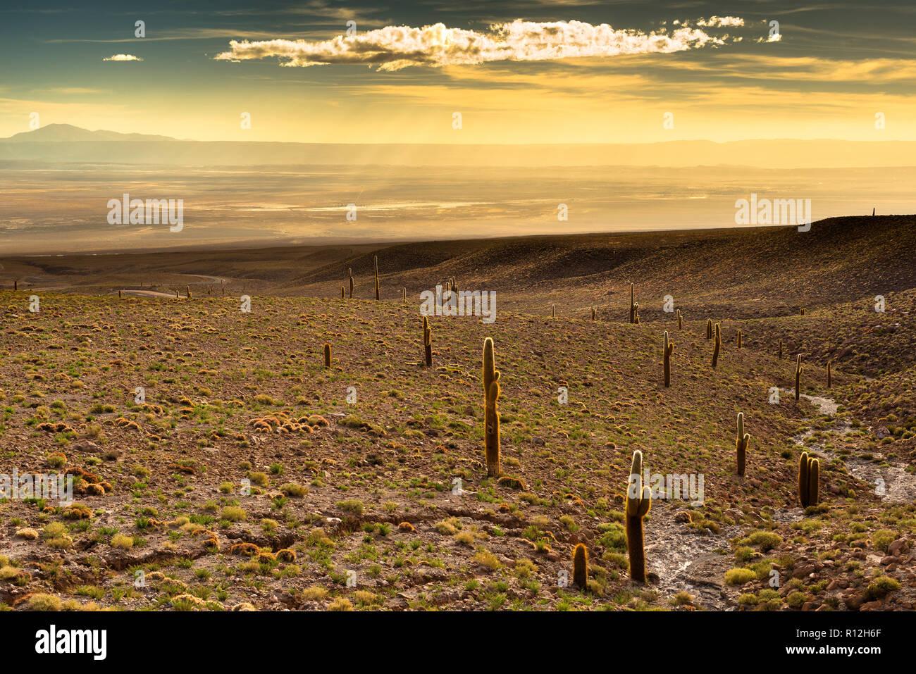 View of the Atacama Salt Lake (Salar de Atacama) at sunset, Atacama desert, Chile Stock Photo