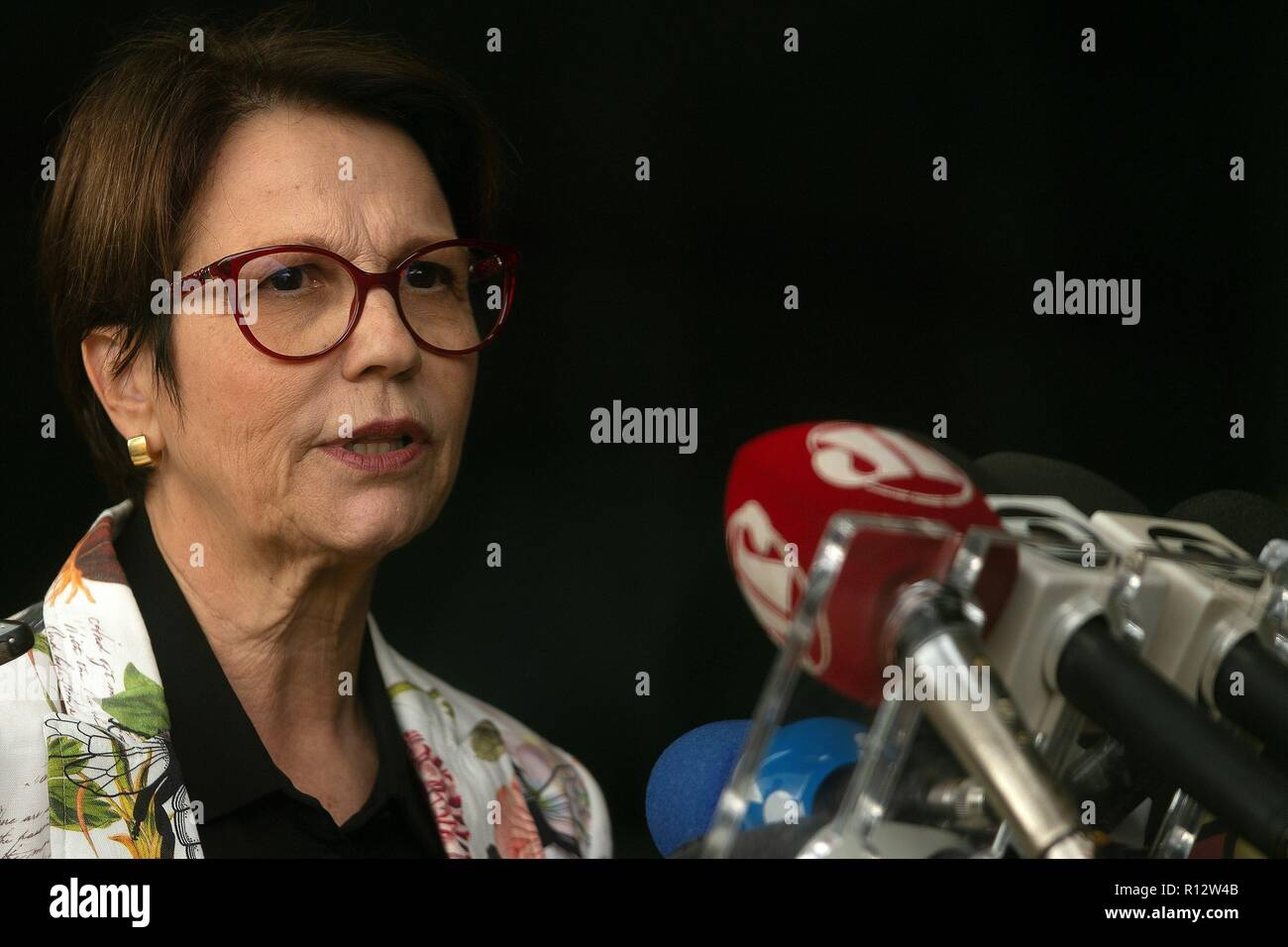 Brazilian future Agriculture Minister Tereza Cristina da Costa addresses the media, in Brasilia, Brazil, 08 November 2018. Da Costa admitted that the intention of Brazilian President-elect Jair Bolsonaro to transfer the country's embassy in Israel from Tel Aviv to Jerusalem worries the business sector that negotiates with the Arab world. EFE/ Joedson Alves - Stock Image