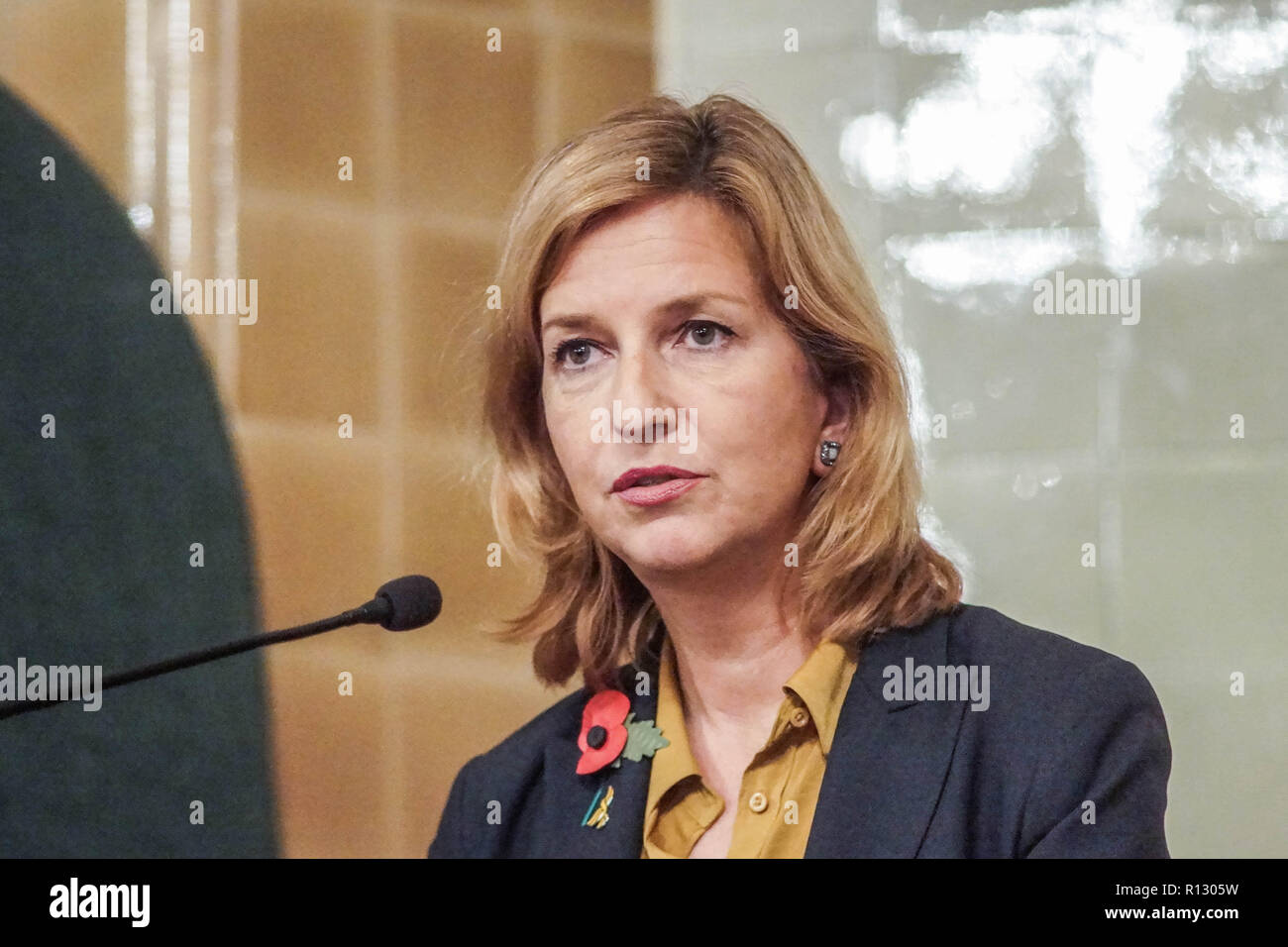London, UK. 08 November 2018. London, England. Irina Von Wiese at Lib Dems hold GLA 2020 hustings in the David Lloyd George Room at the National Liberal Club. Reetendra Nath Banerji, Rob Blackie, Caroline Pidgeon, Charley Hasted, Irina Von Wiese, Chris Maines, Hina Bokhari and Joyce Onstad all addressed Liberal Democrat Party members with an view to selection as candidates for the Greater London Assembly election of 2020. © Peter Hogan/Alamy Live News - Stock Image