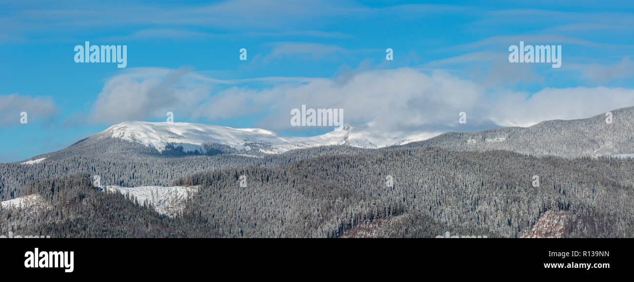 Picturesque winter morning mountains panorama view from Skupova mountain alpine slope. Verkhovyna district, Ukraine, view to Chornohora ridge and Pip  Stock Photo