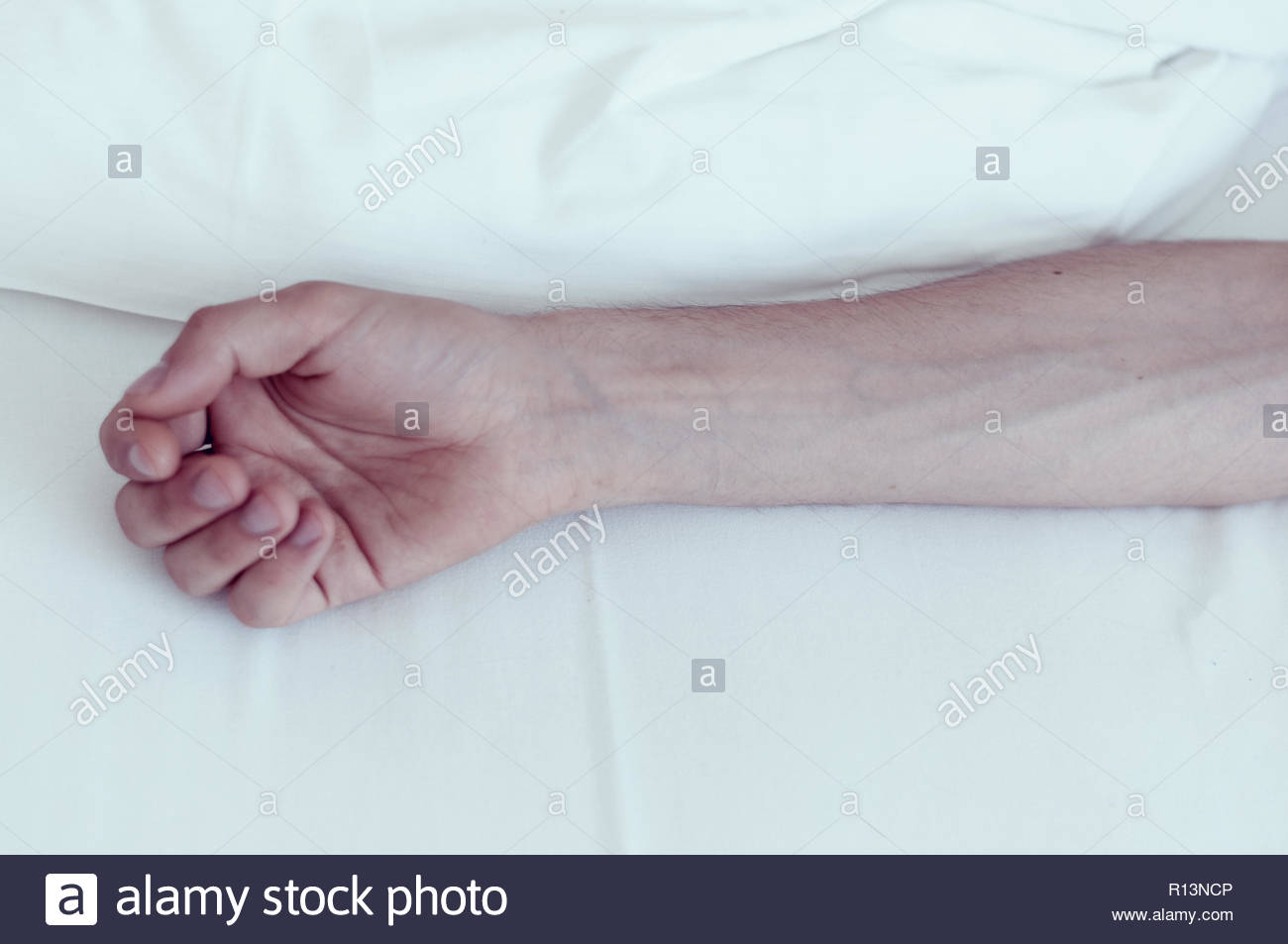 The softest touch - Stock Image
