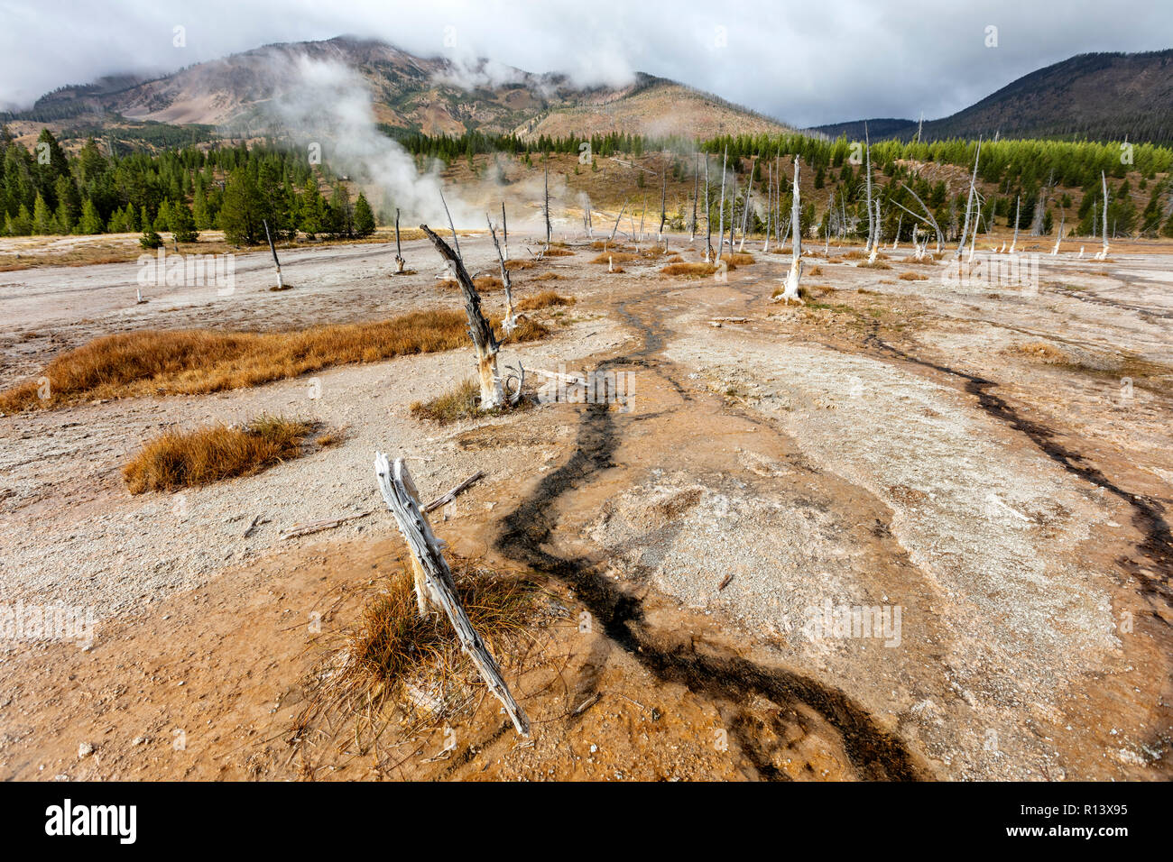 WY03579-00...WYOMING - Heart Lake Geyser Basin at the base of the Red Mountains in Yellowstone National Park. - Stock Image