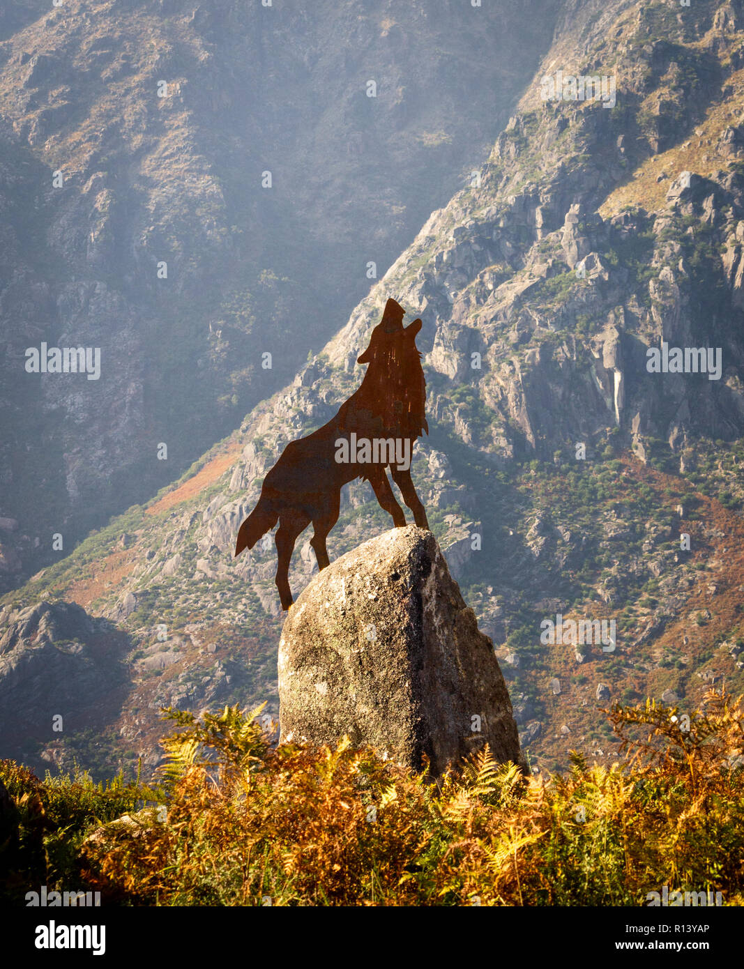 Brass Figure of a wolf howling on top of a rock. Autumn leaves. - Stock Image
