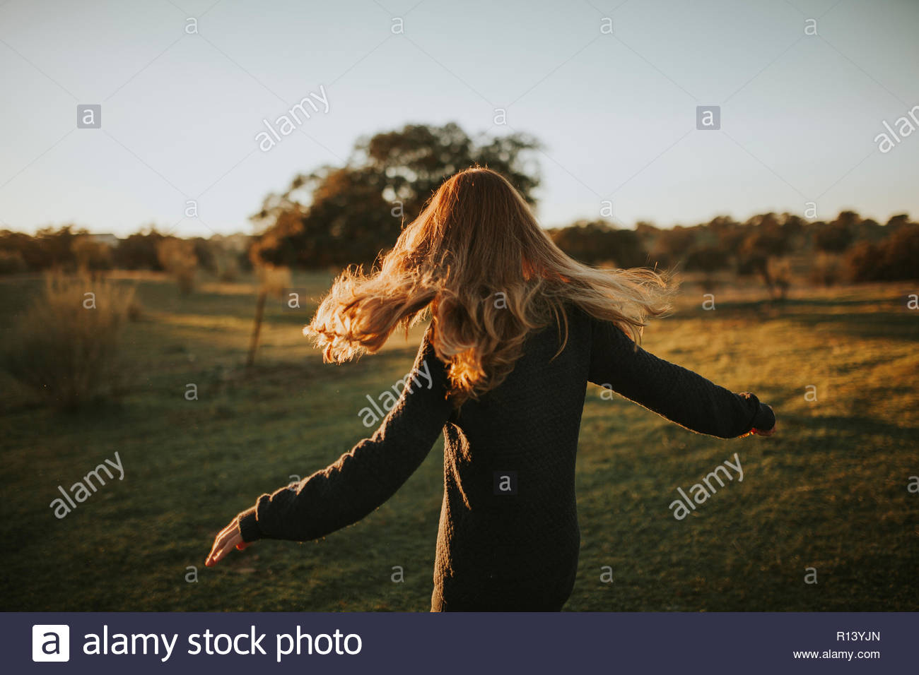 Rear view of a woman with long hair standing in a field on a sunny day - Stock Image