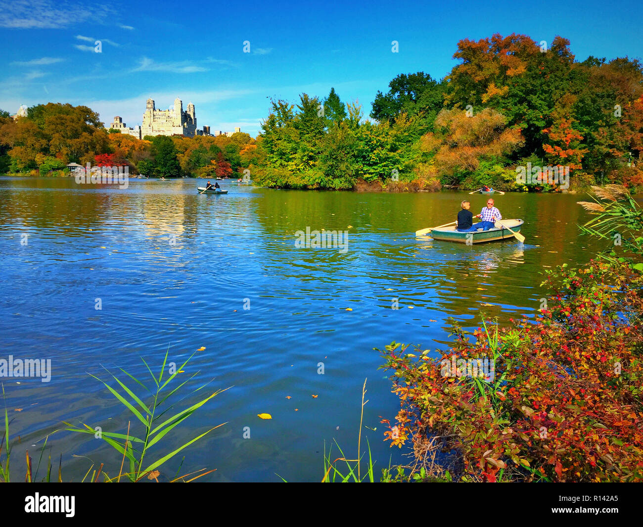 Central Park with Beresford Apartments Building in Background, NYC - Stock Image