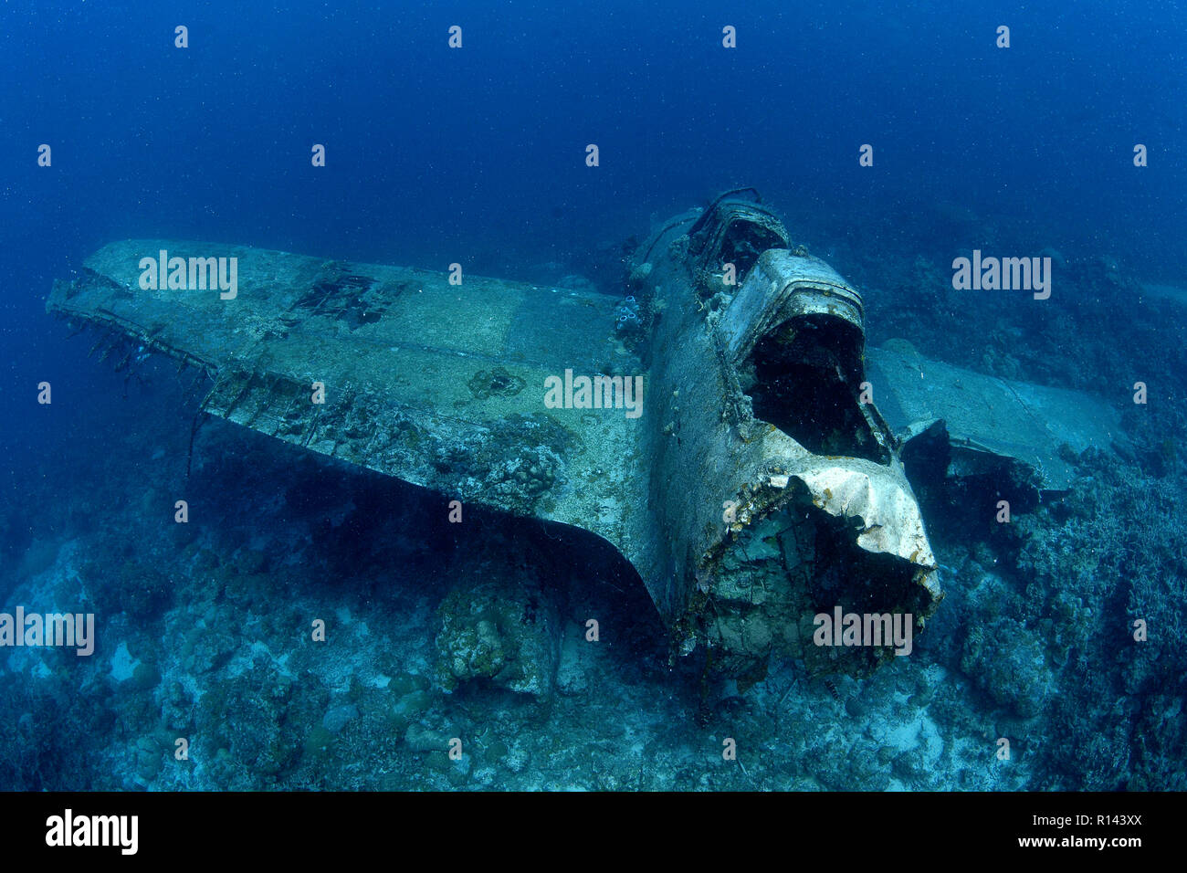 A american Zerofighter of  WW II at seabed, Palau, Micronesia - Stock Image