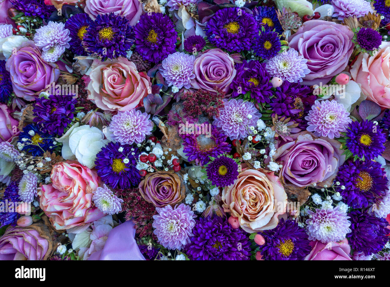 Slightly withered purple flower arrangement - Stock Image