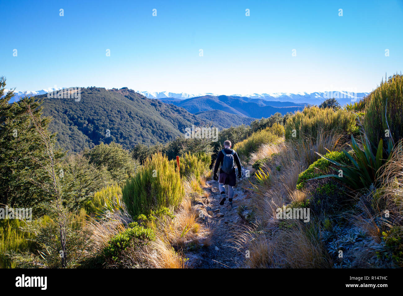 A man enjoying the outdoors hikes along a hillside track in the mountains in New Zealand Stock Photo