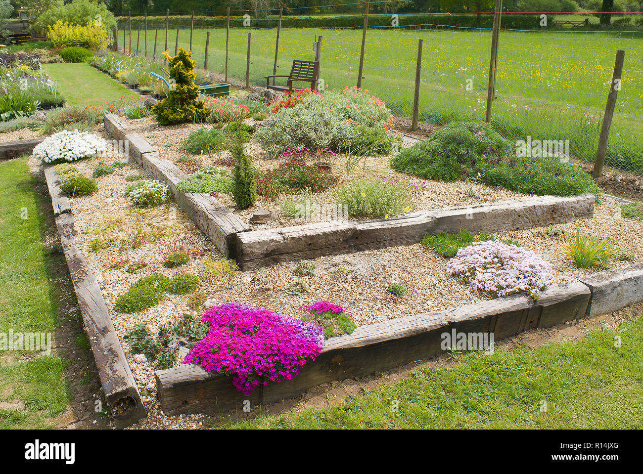 Concentric rectangles form the shape of a shallow raised Alpine bed bounded by old railway sleepers in an English nursery in UK - Stock Image