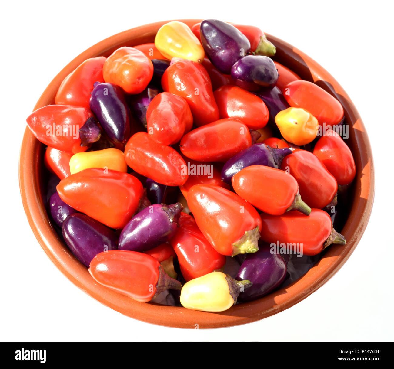 Chili, Lila Luzi - Stock Image