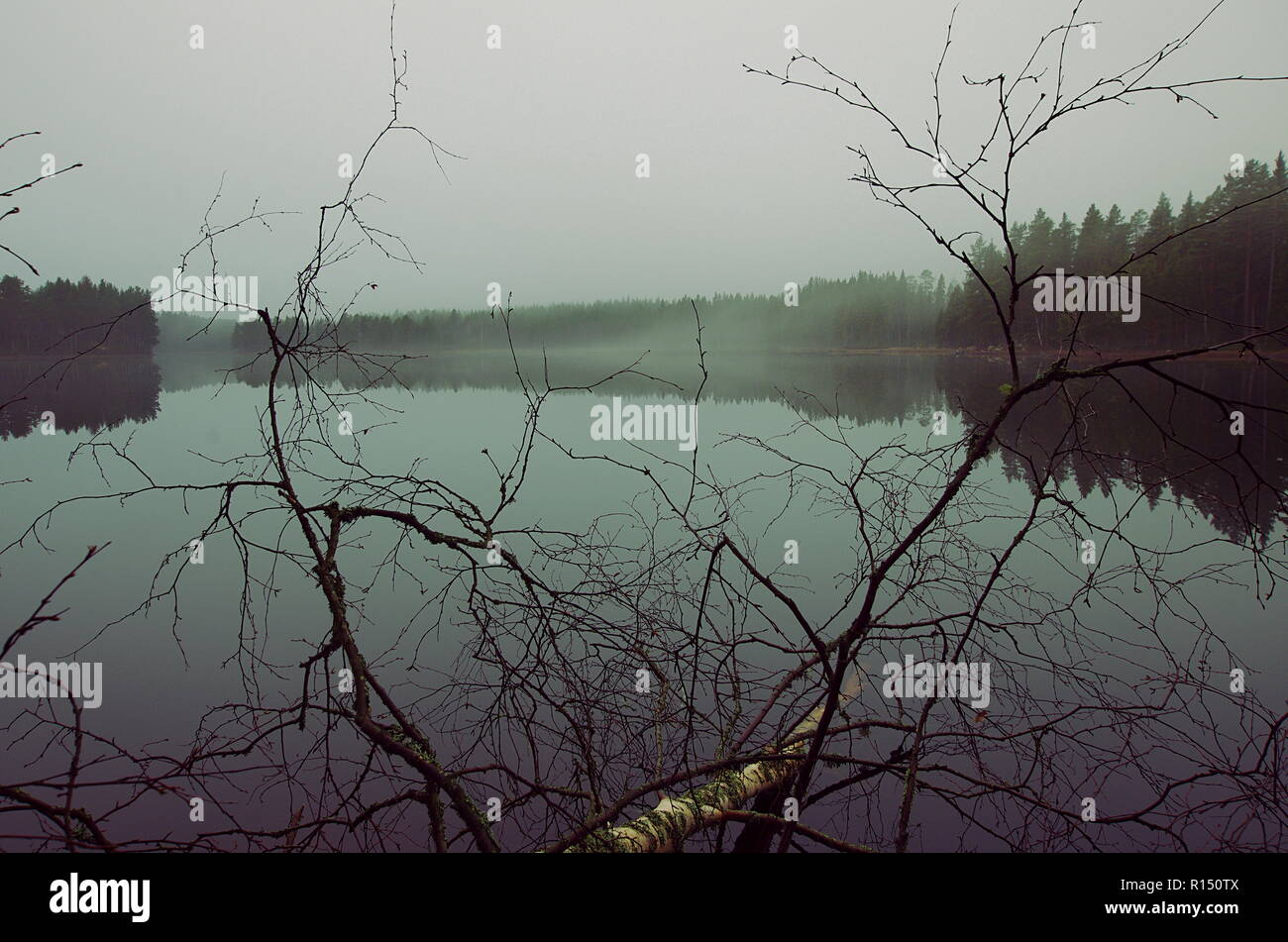 A foggy autumn afternoon over a lake in Dalarna - Stock Image