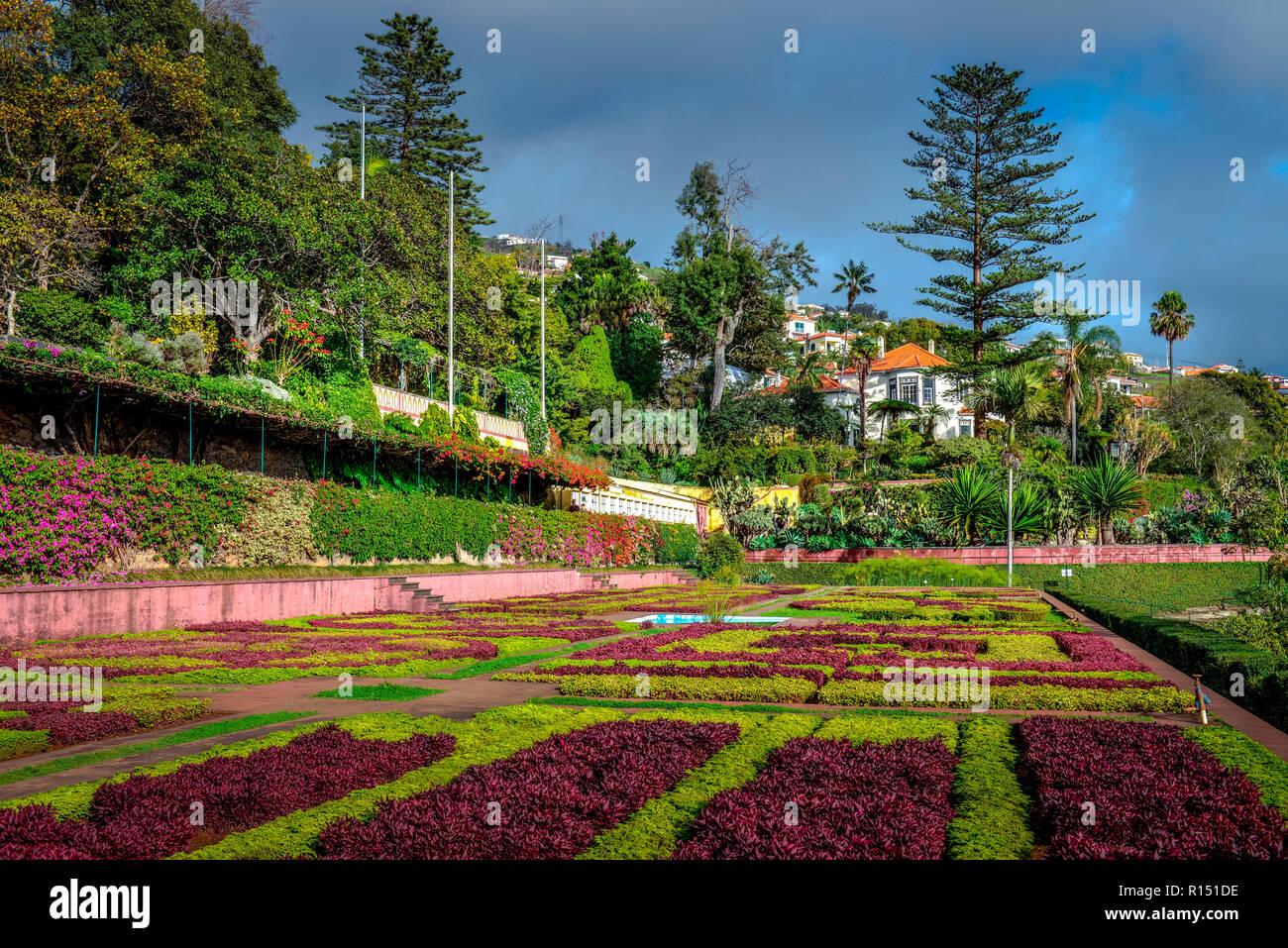 Blumenbeete Botanischer Garten Funchal Madeira Portugal Stock