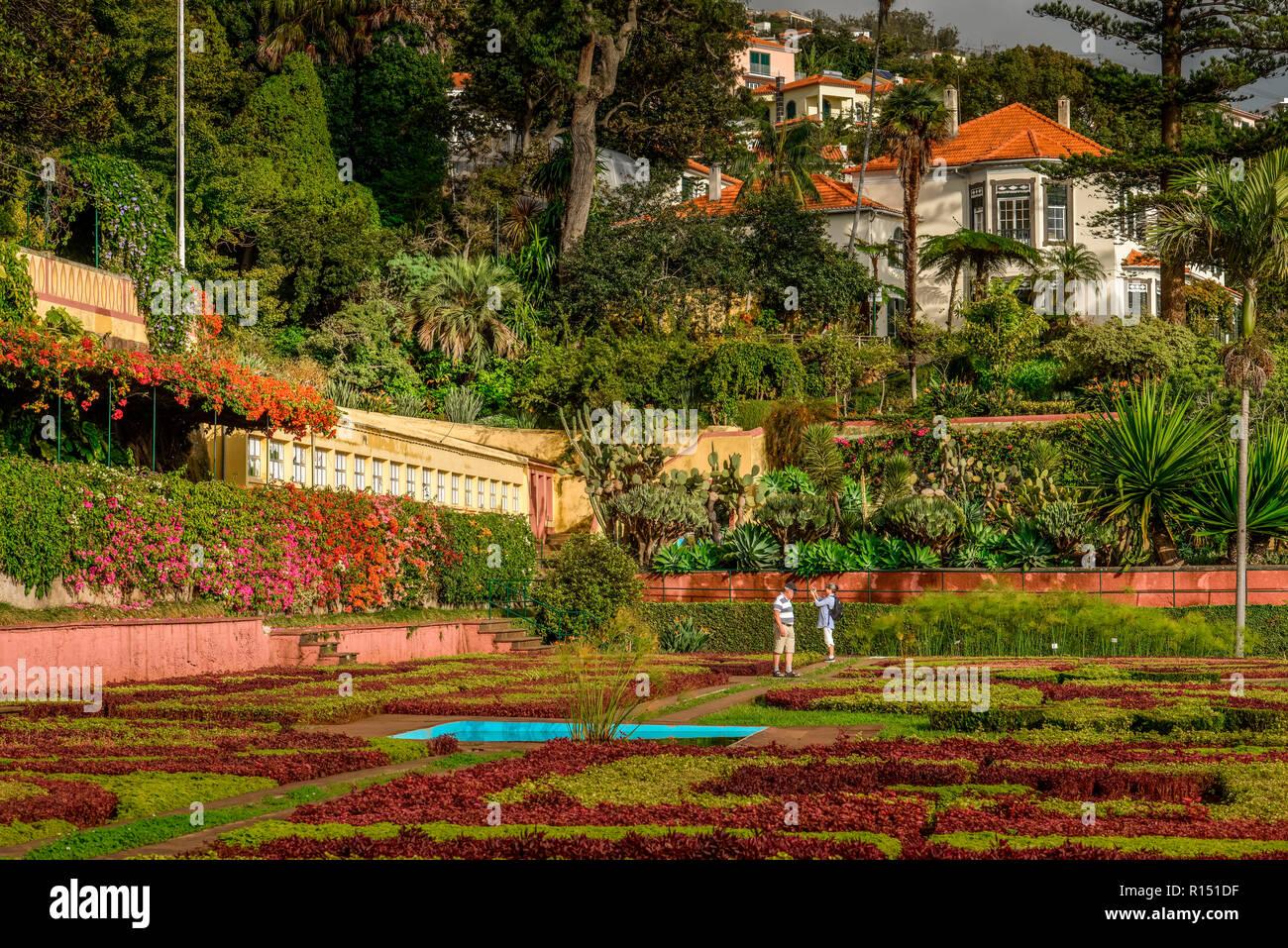 Blumenbeete, Herrenhaus, Botanischer Garten, Funchal, Madeira, Portugal Stock Photo