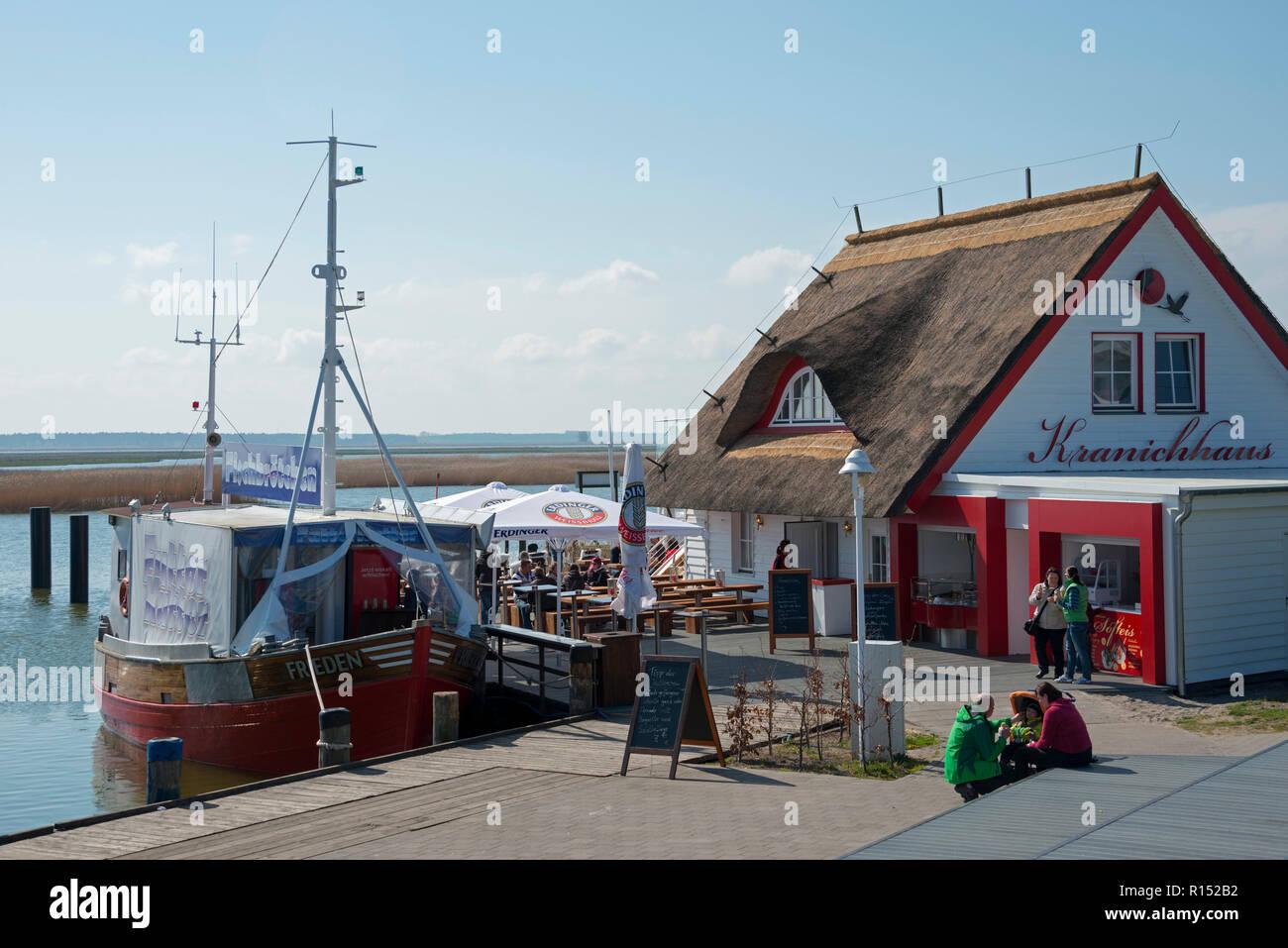 Trawler Frieden and Kranichhaus, Zingst, Mecklenburg-Western Pomerania, Germany - Stock Image