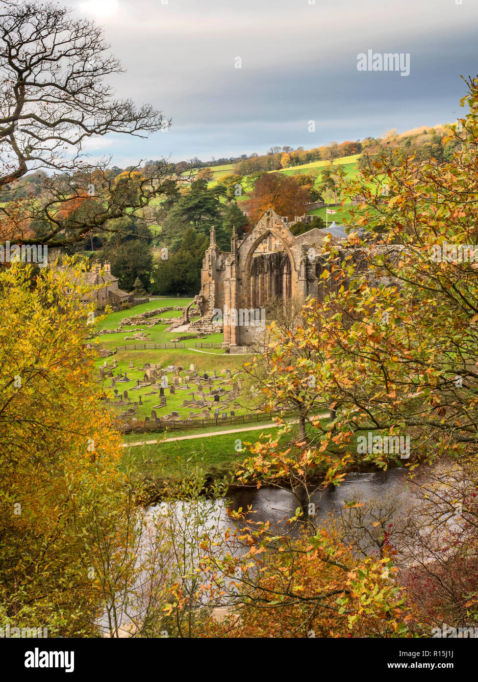 The ruins of Bolton Priory from a viewpoint across the River Wharfe in autumn at Bolton Abbey Yorkshire Dales England - Stock Image