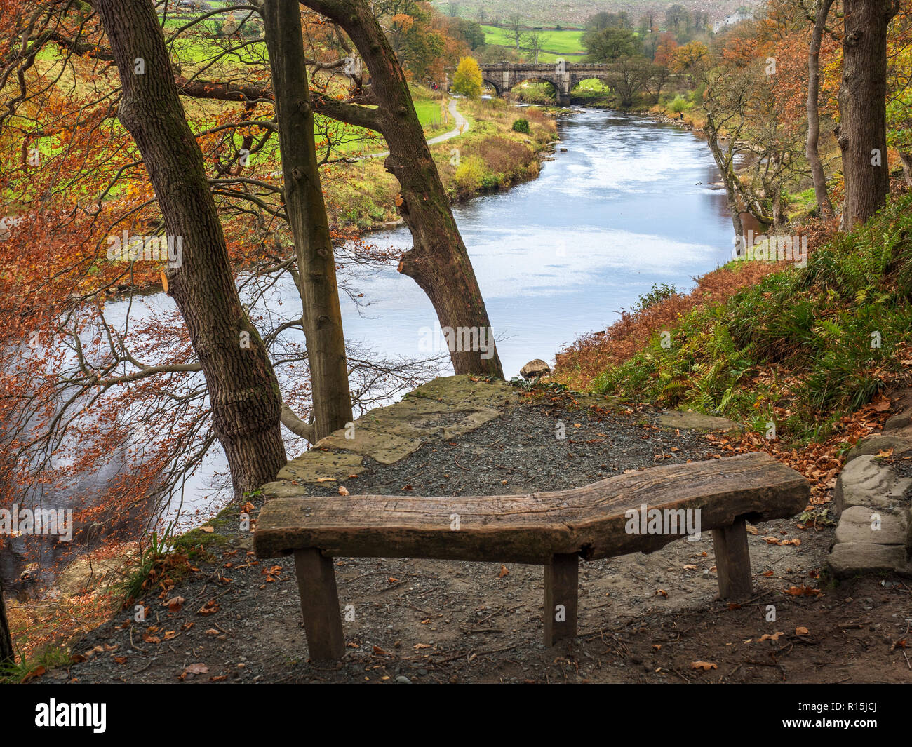 Bench at a viewpoint overlooking the River Wharfe and aqueduct footbridge in Strid Wood Bolton Abbey Yorkshire Dales England - Stock Image