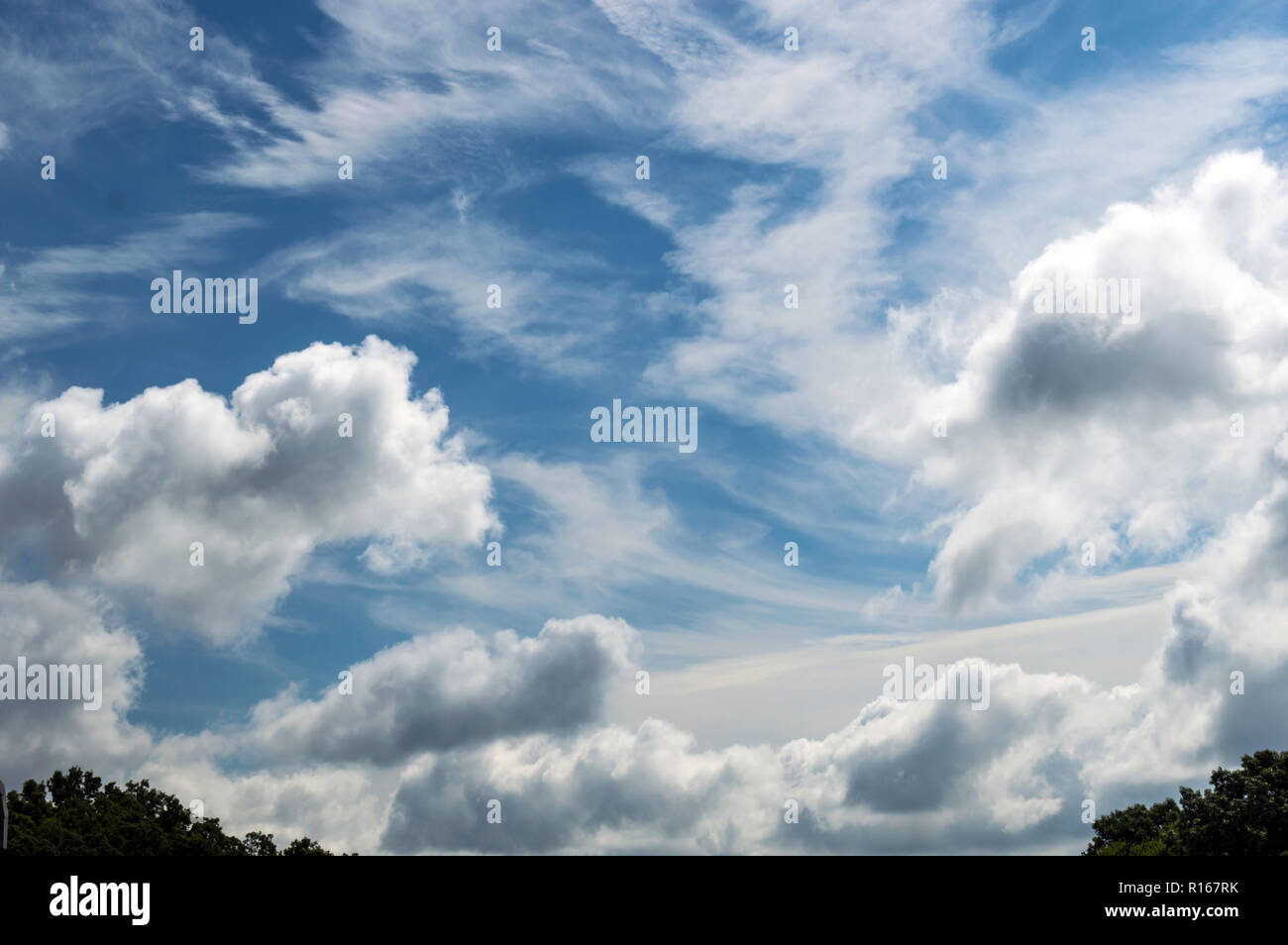 Pretty and peaceful white clouds fill the blue sky just above the tree line on a bright clear day - Stock Image