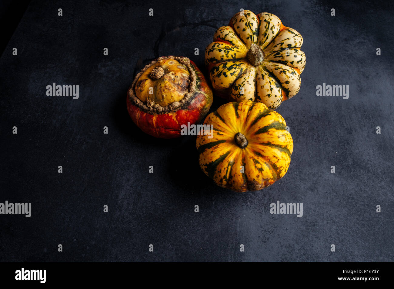 Squash or Pumpkins - Stock Image