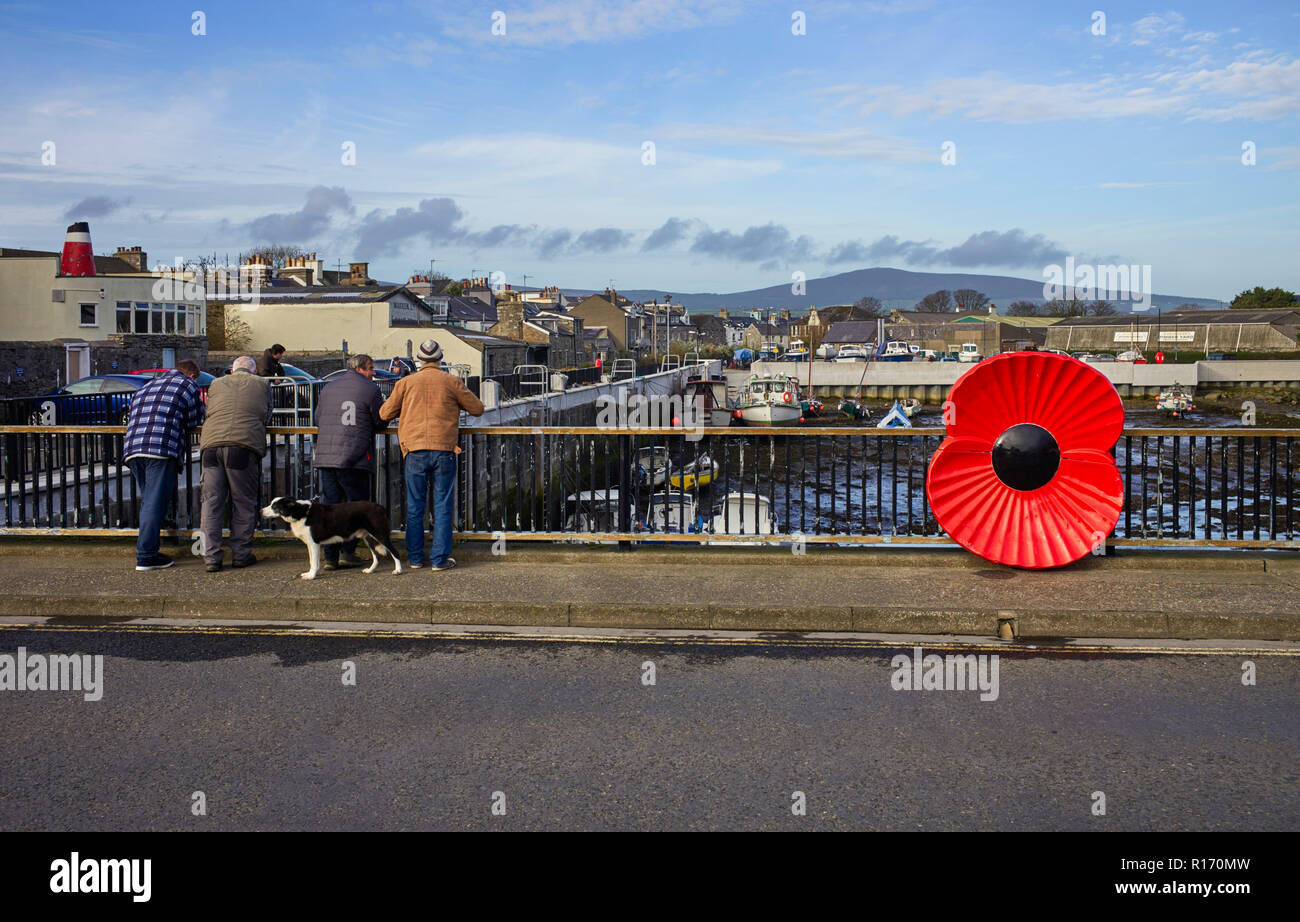 Four men and a dog looking over a bridge with a giant plastic poppy in Castletown, Isle of Man - Stock Image