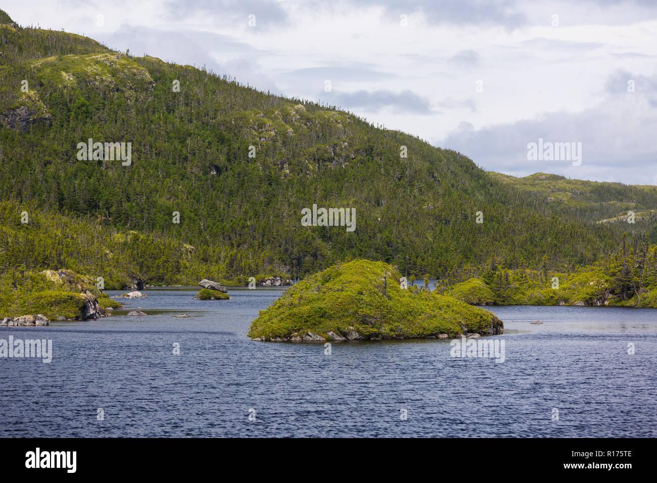 CAPE RANDOM, NEWFOUNDLAND, CANADA - Pond. - Stock Image