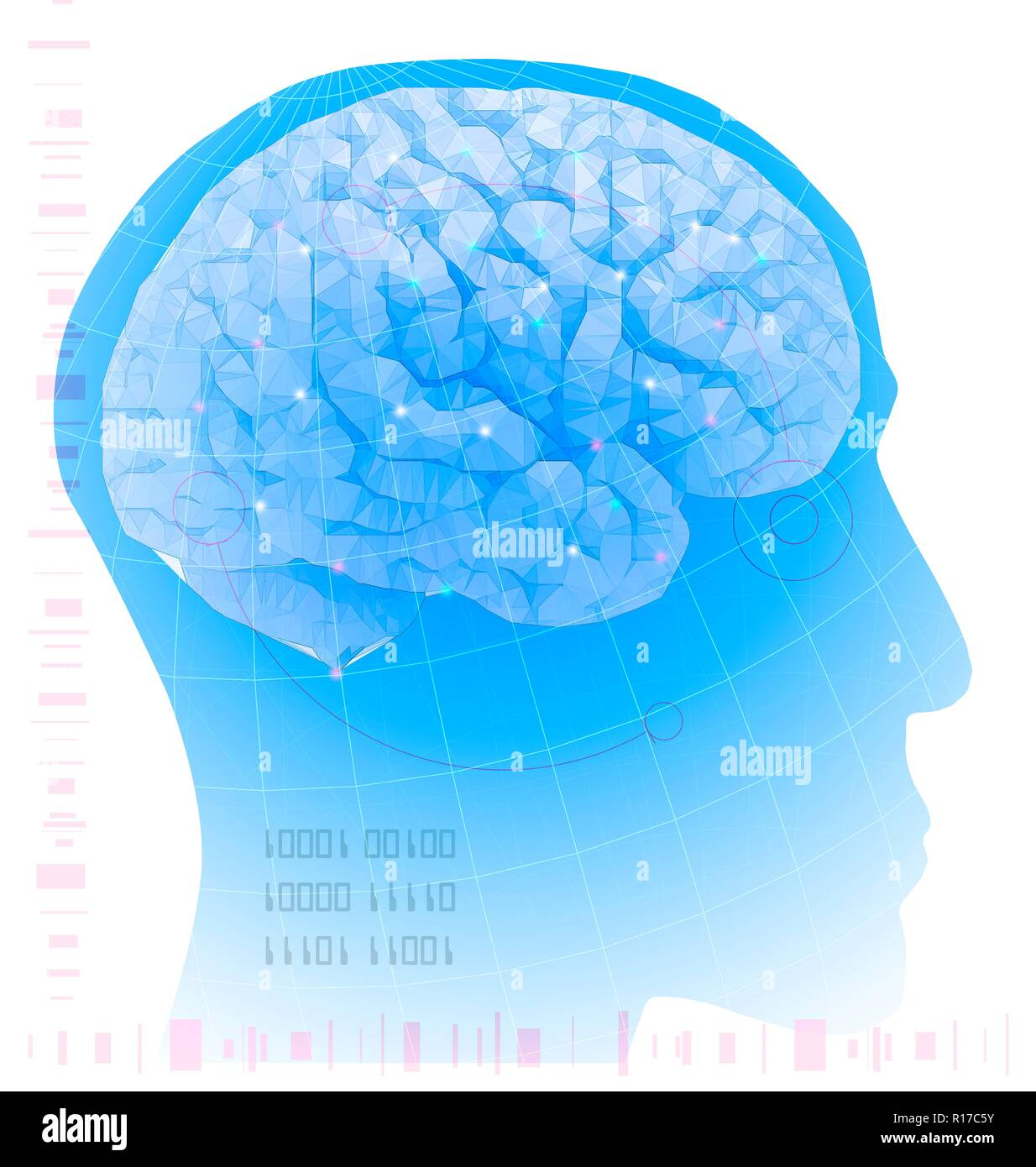 Artificial intelligence. Conceptual illustration of a human head overlaid with a stylised brain, representing artificial intelligence, the simulation of human intelligence by a machine. Binary numbers, which contain only 1 and 0, form the language of computers. Artificial intelligence is usually taken to mean a computer or machine that can think and learn independently of its original program. - Stock Image