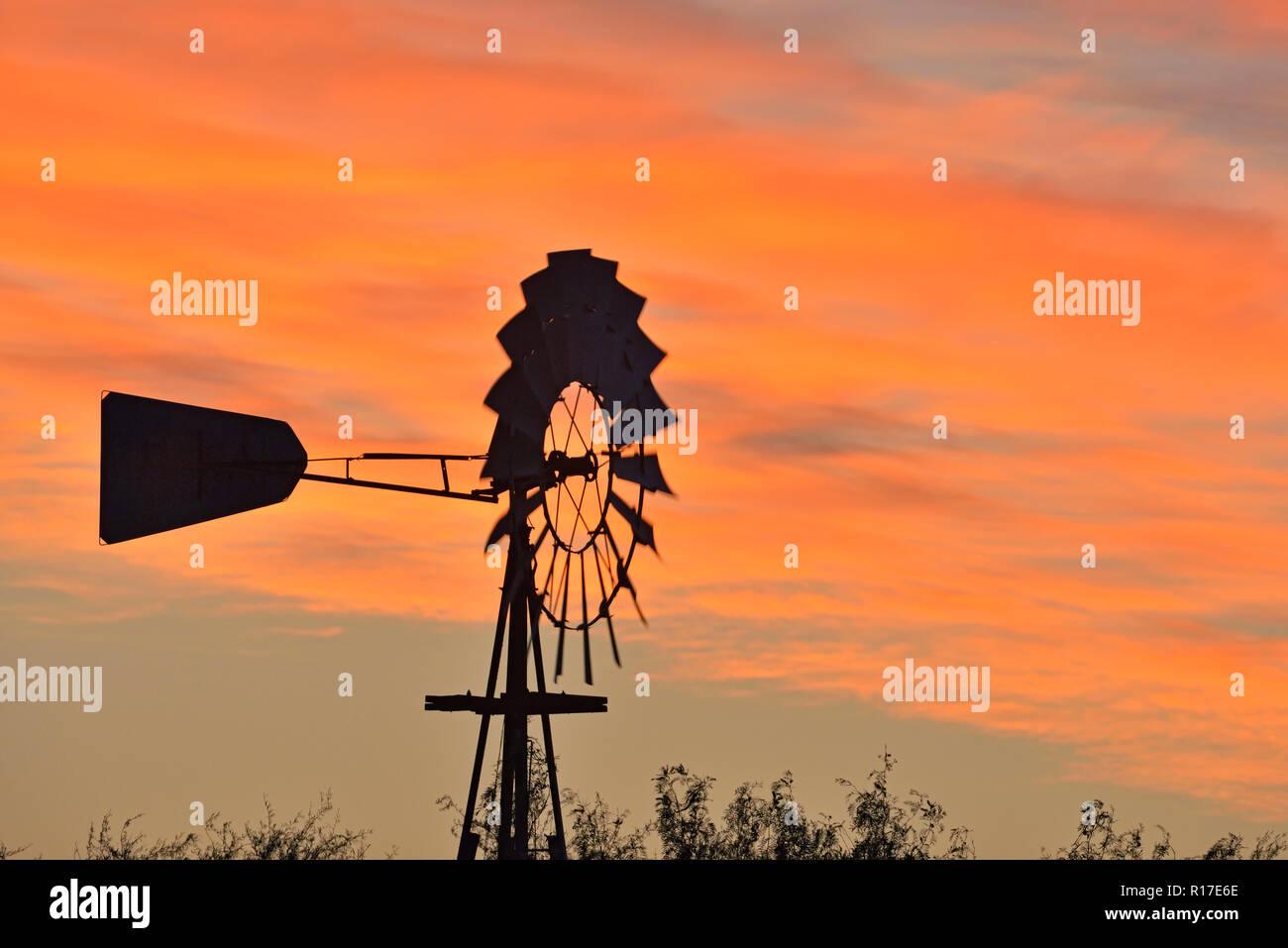 Wind turbine at dawn at Campos Viejos Ranch, Rio Grande City, Texas, USA Stock Photo