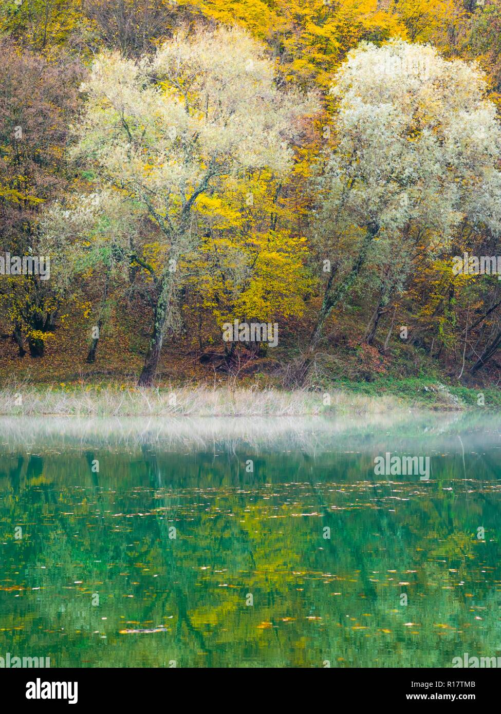 Nature lake - Stock Image