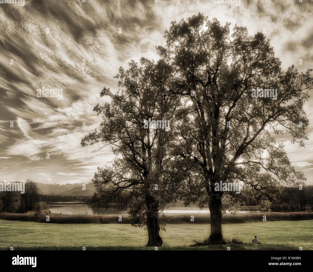 PHOTO ART: Tranquil scene at the Ostersee (Lake) near Iffeldorf, Bavaria, Germany - Stock Image