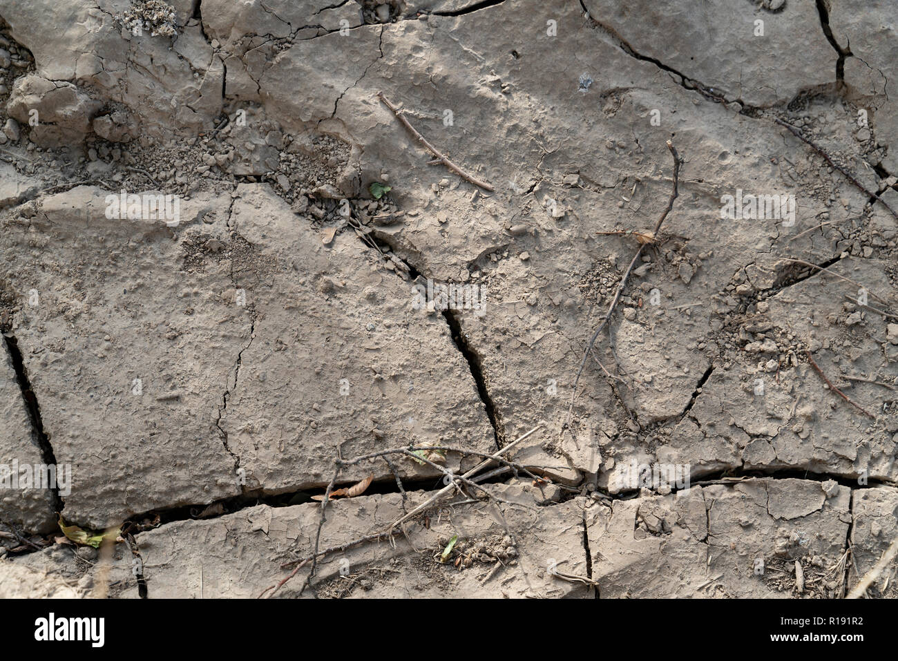 In the hot summer, the soil crusts. Deep cracks form. The surface of the soil is hard and dusty. Close up. - Stock Image