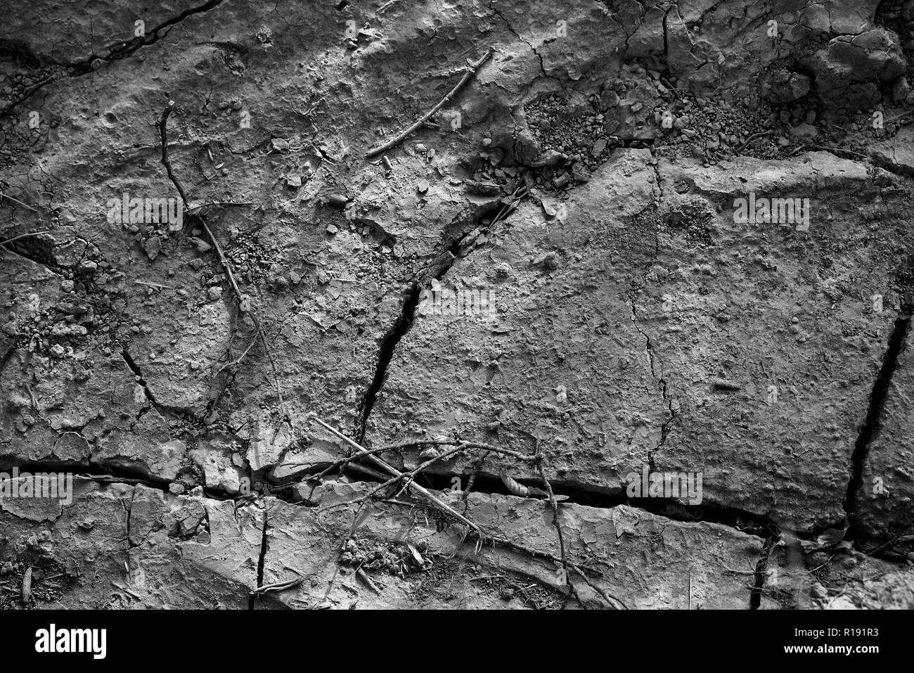 In the hot summer, the soil crusts. Deep cracks form. The surface of the soil is hard and dusty. - Stock Image