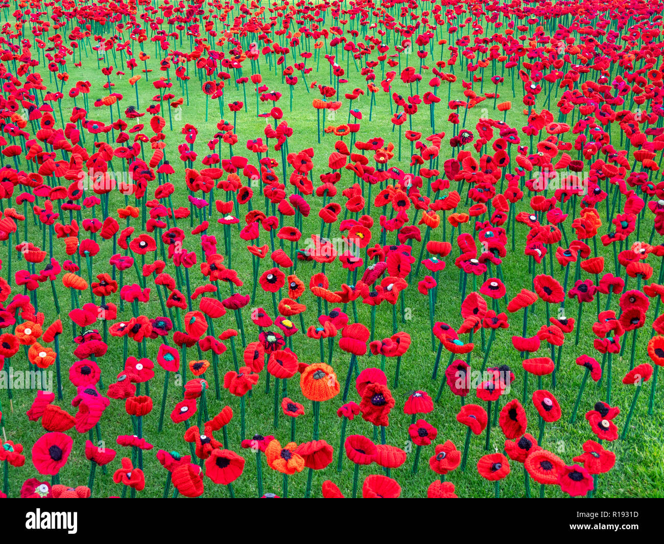2018 Remembrance Day Poppy Project display of handcrafted poppies in Kings Park Perth Western Australia - Stock Image