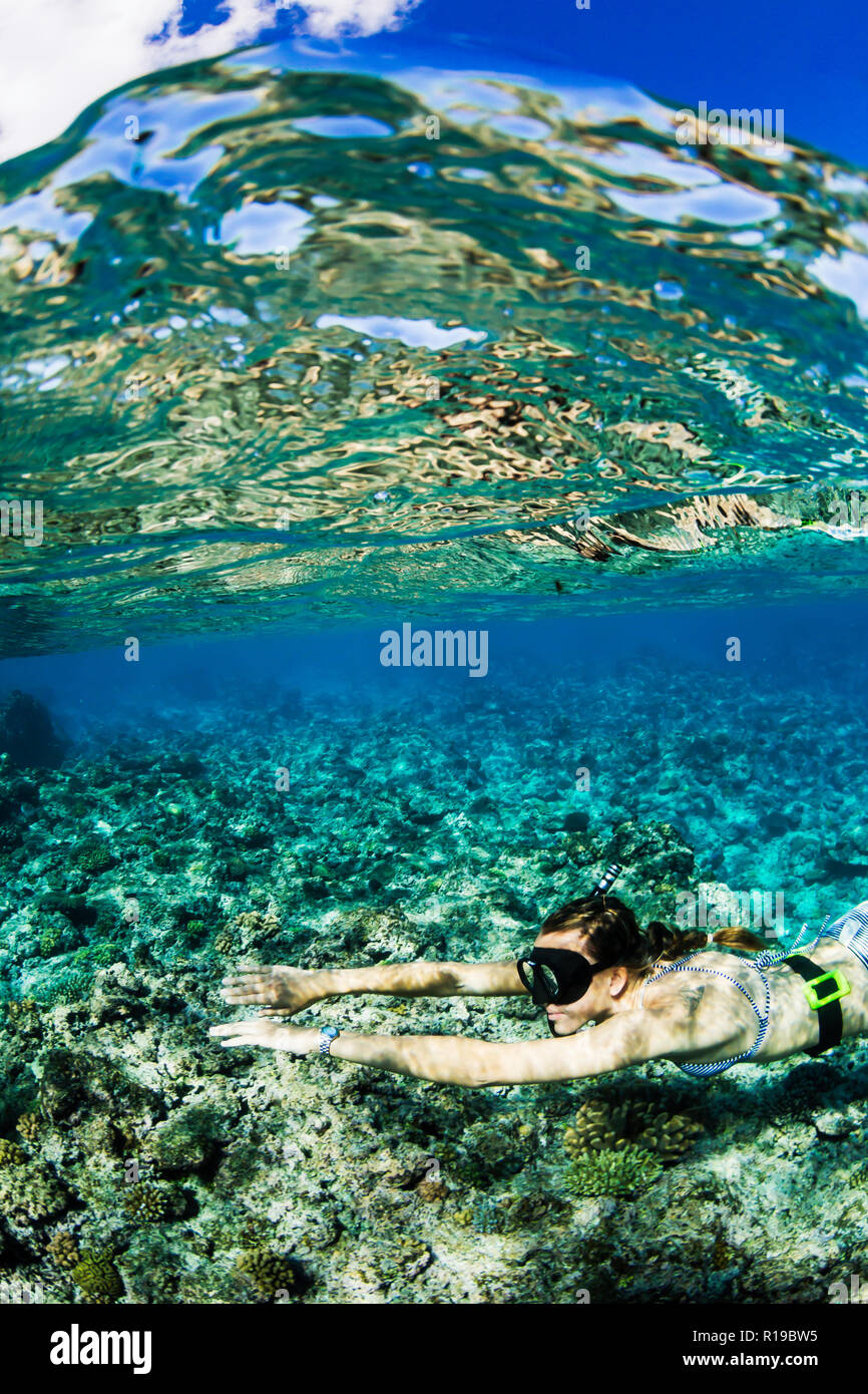 Snorkeling the pristine reefs on the remote Island of Alofi in The French Territory of Wallis and Futuna Islands. - Stock Image