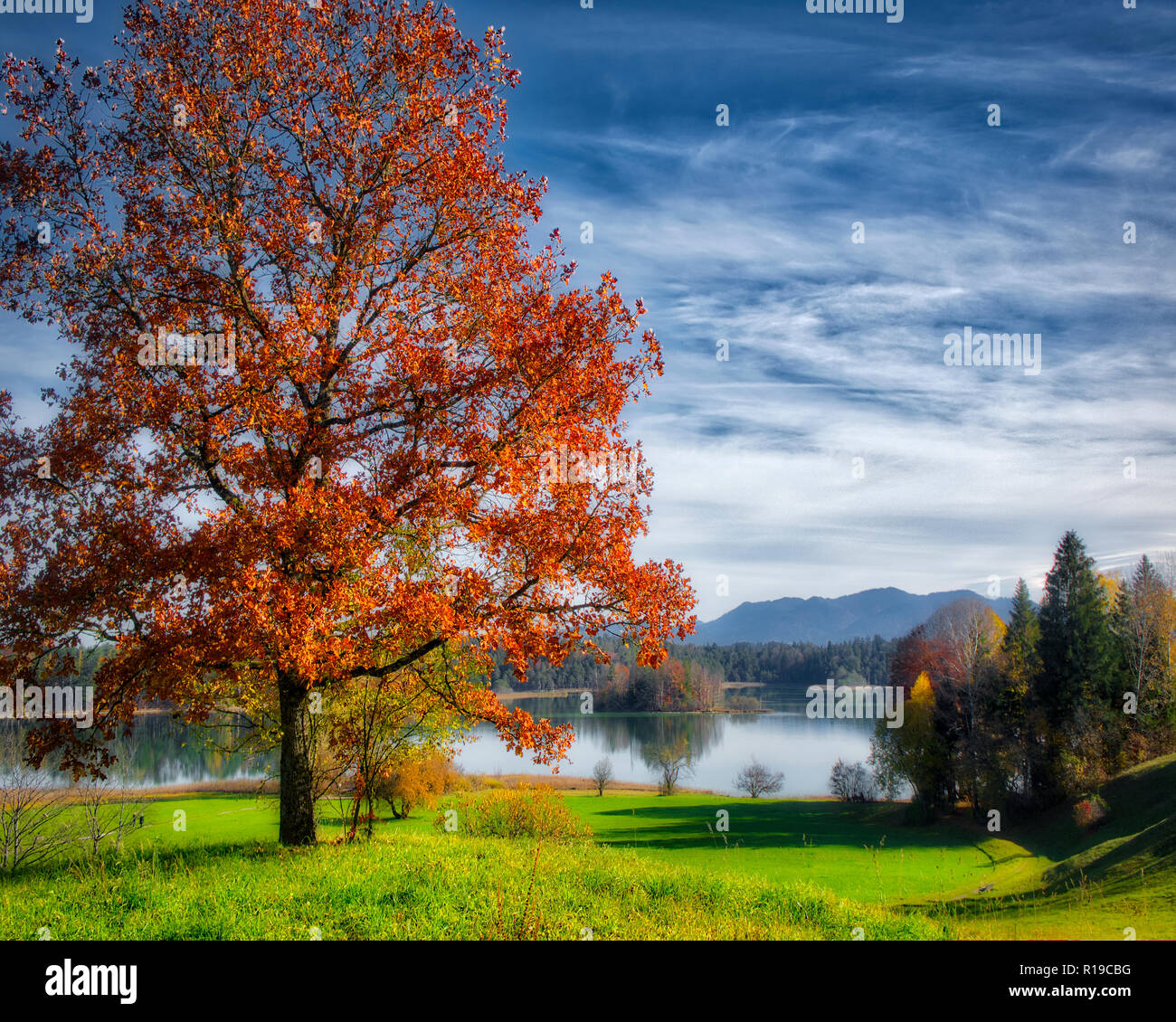 DE - BAVARIA: Tranquil scene at the Ostersee (Lake) near Iffeldorf - Stock Image