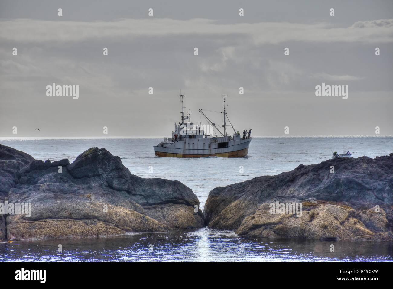 Flakstad, Flakstadøya, Nesland, Fischerdorf, felsküste, verlassen, Hafen, Dorf, Hafenbecken, Rorbu, Ferien, Hütte, Steg, Bucht, Fjord, Vestfjorden, - Stock Image