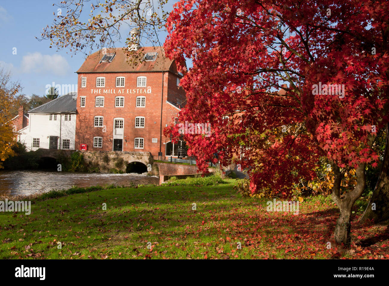 the old watermill at Elstead in autumn, Surrey (now a restaurant), England Stock Photo
