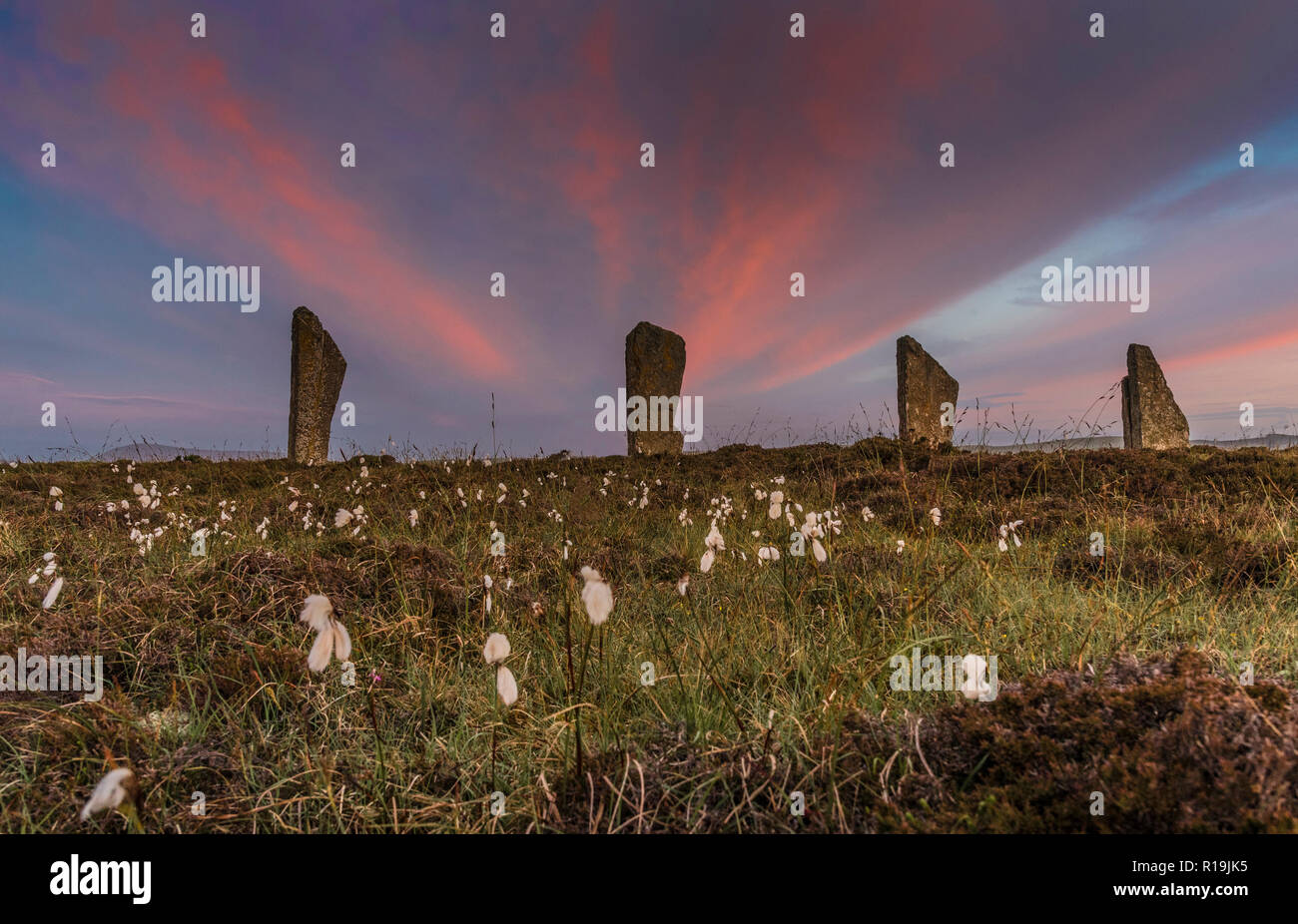 Orkney at Ring of Brodgar neolithic standing stones, stone circle, summer solstice. - Stock Image