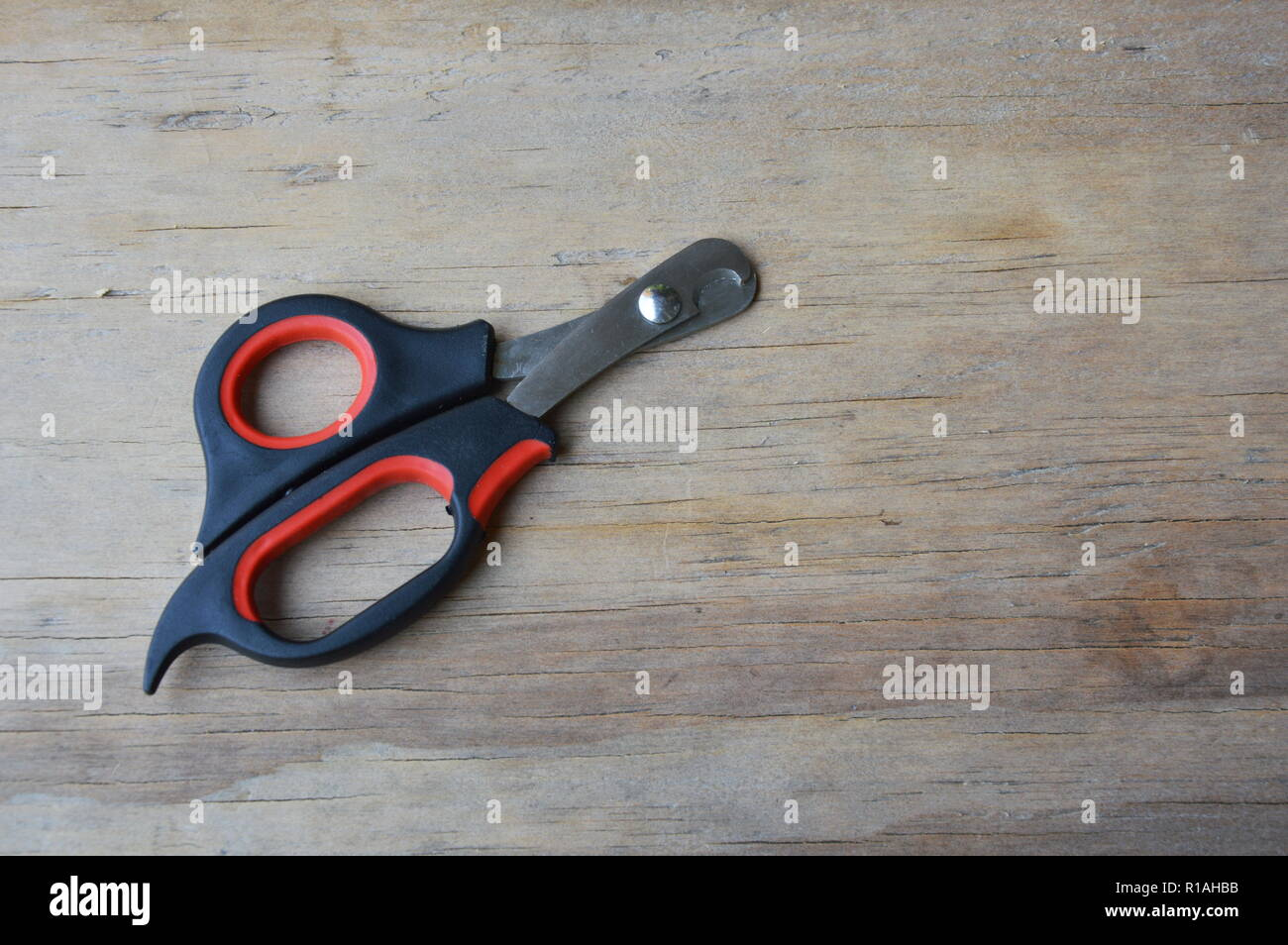 dog and cat nail nipper on wooden board - Stock Image