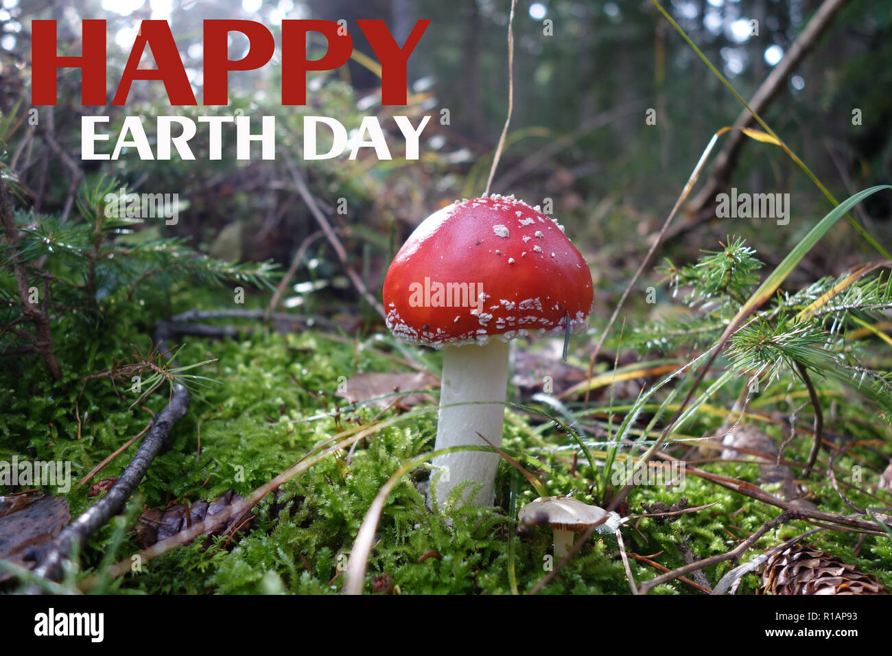 HAPPY EARTH DAY - Stock Image
