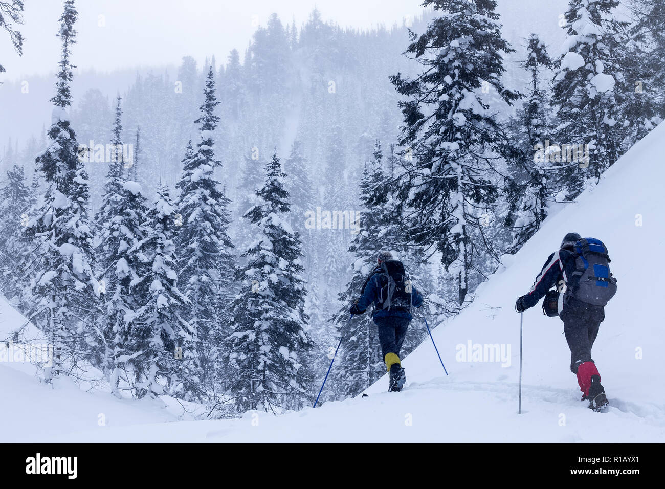 A skier walks in the mountains Stock Photo