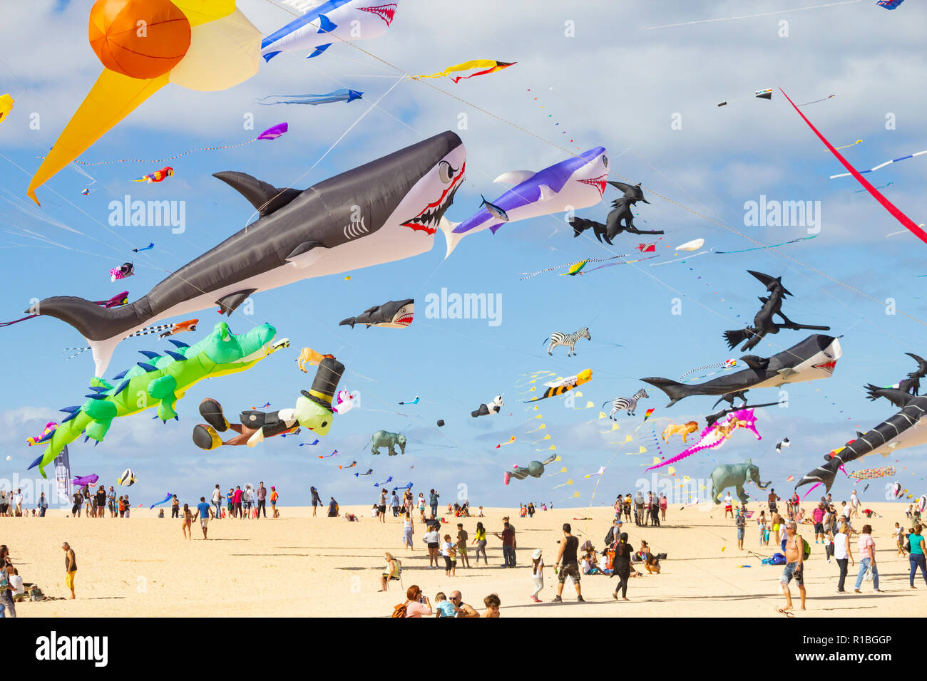 Fuerteventura, Canary Islands, Spain. 10th Nov, 2018. Hundreds of kites flying on El Burro beach dunes near Corralejo at the 2018 Internationa Kite festival on Fuerteventura in the Canary Islands. Credit: ALAN DAWSON/Alamy Live News - Stock Image