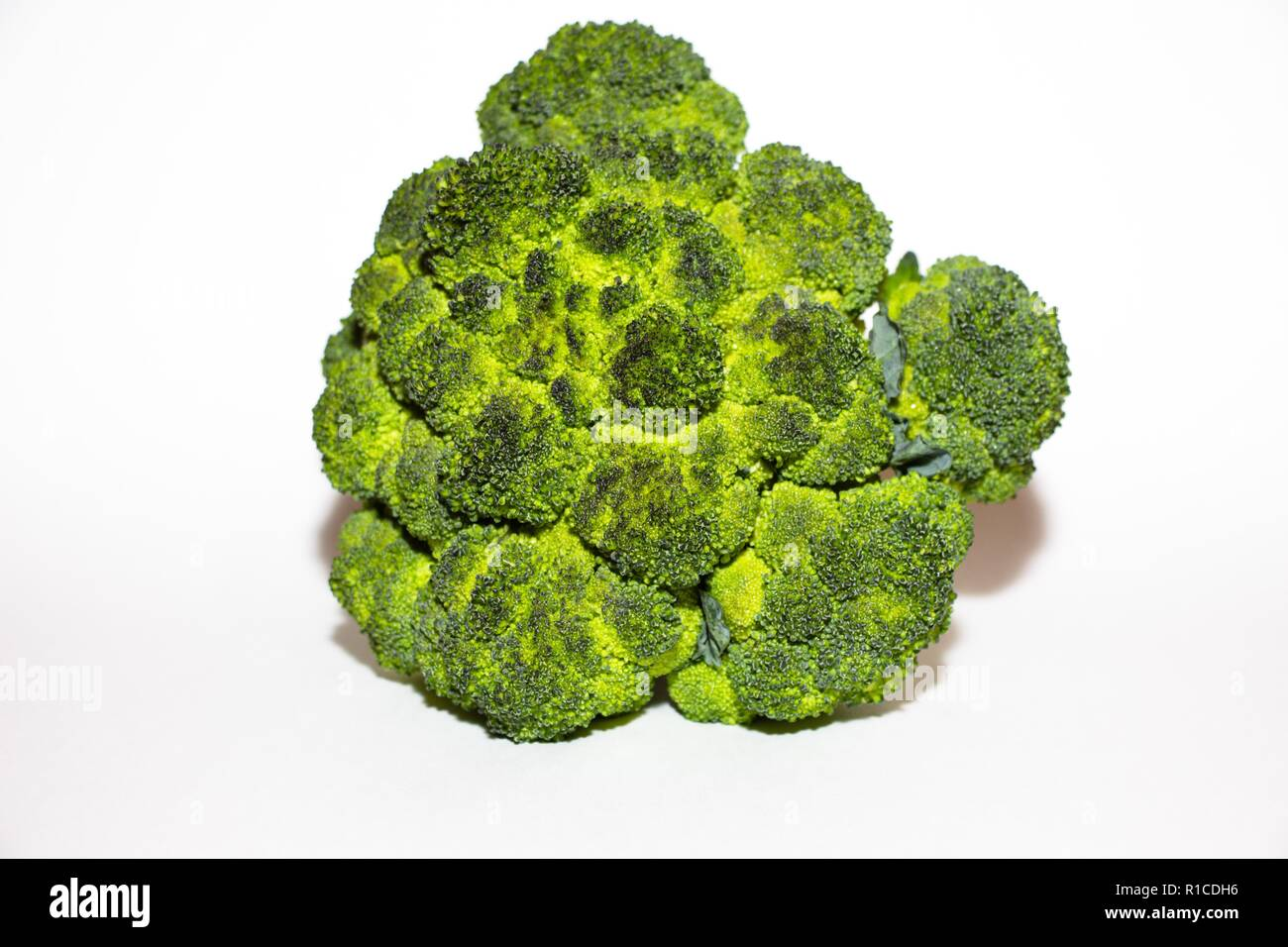 Fresh broccoli cabbage lies on a white background. It is only picked from the garden and ready for use. It is a healthy vegetable and rich in vitamins - Stock Image